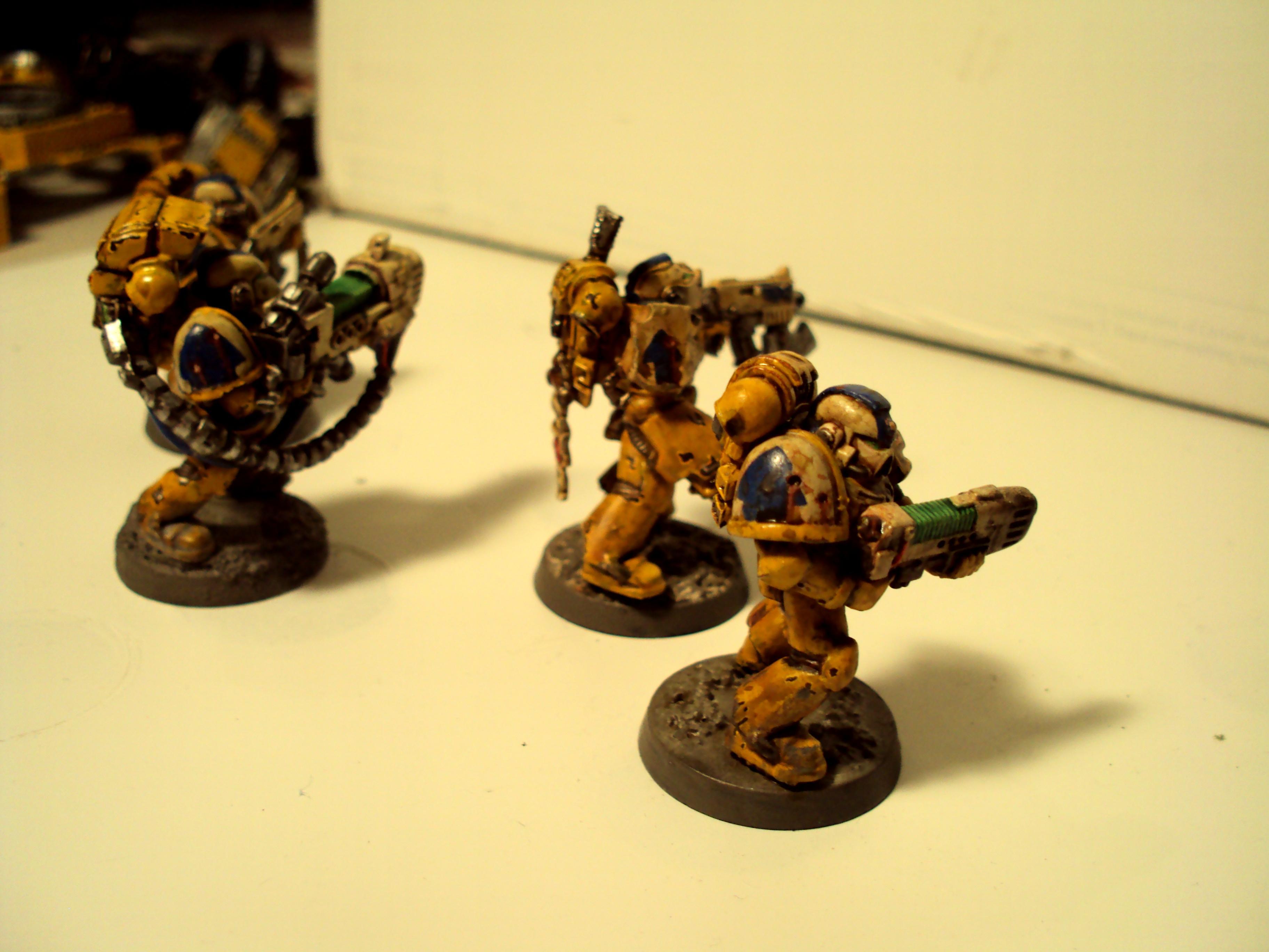 Aegis Guard more assorted tacticals