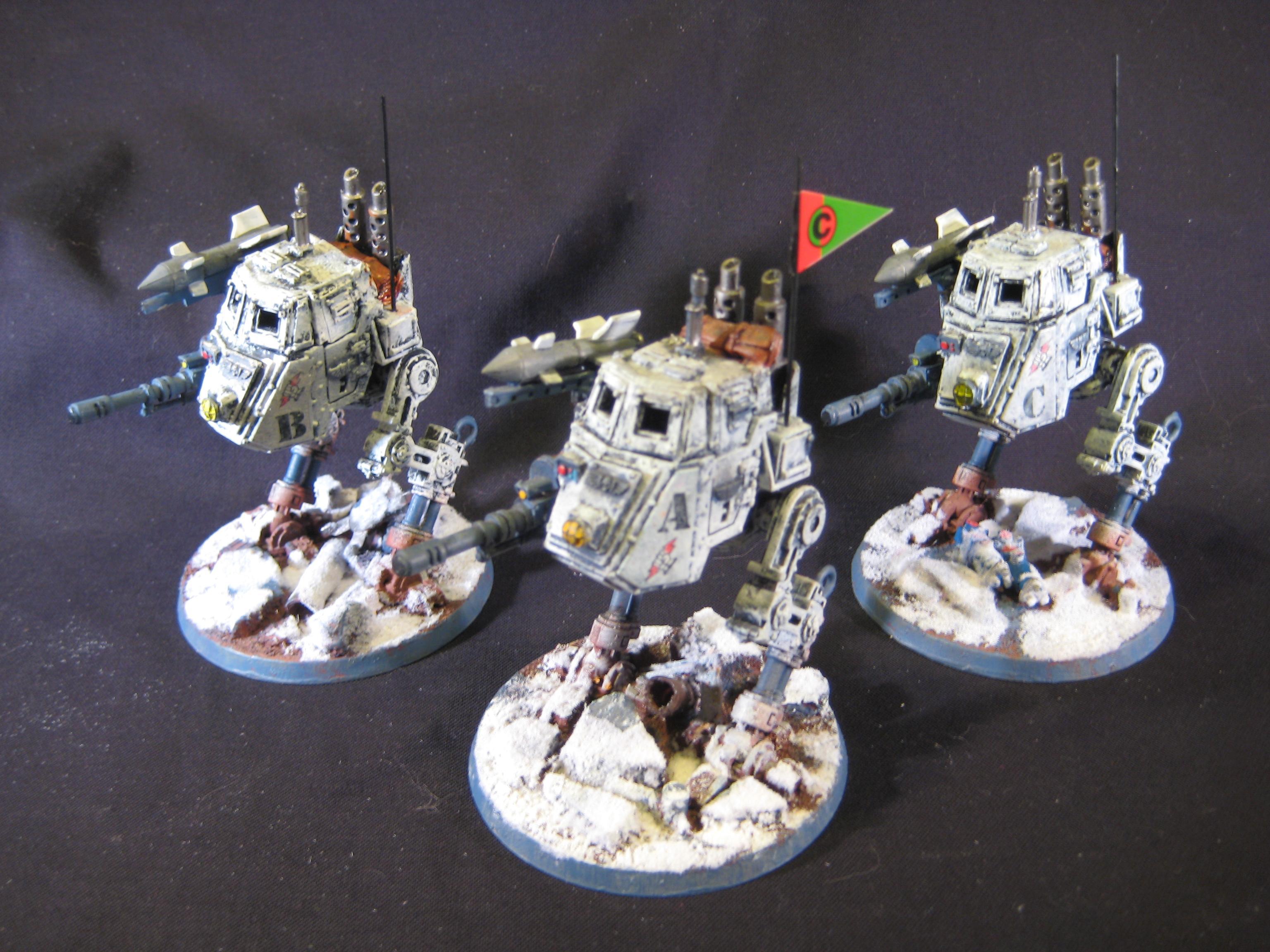 Imperial Guard, Sentinel, Winter Guard