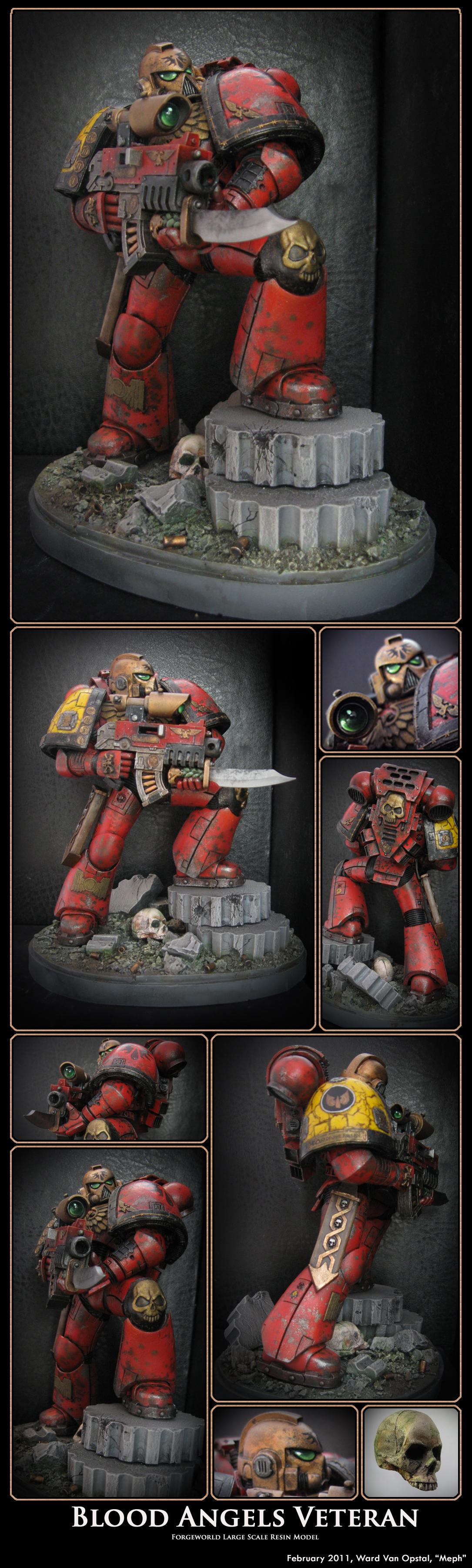 Blood Angels, Forge World, Space Marines, Veteran