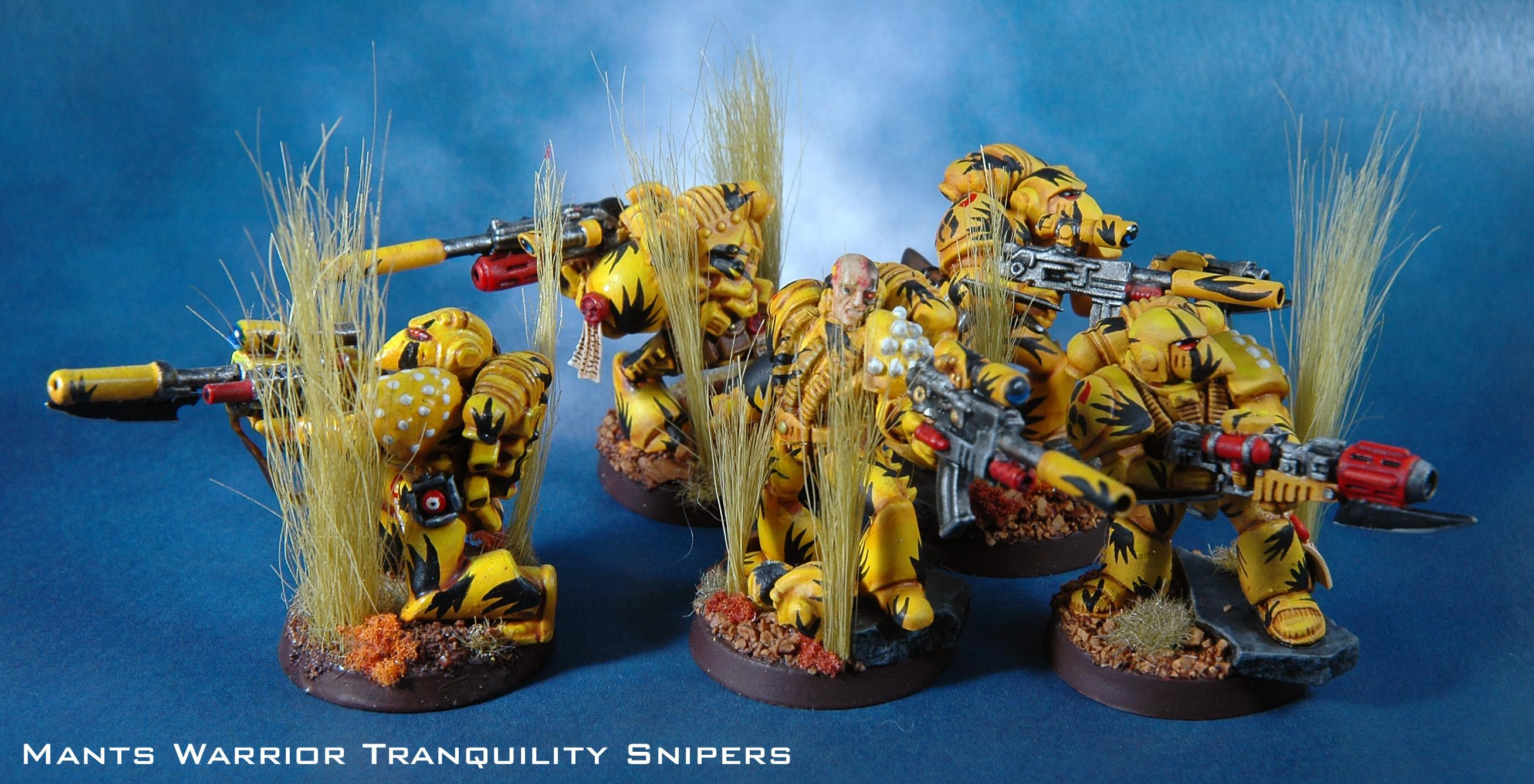 Mantis Warrior, Space Marines, Sternguard, Tranquility Snipers, Warhammer 40,000