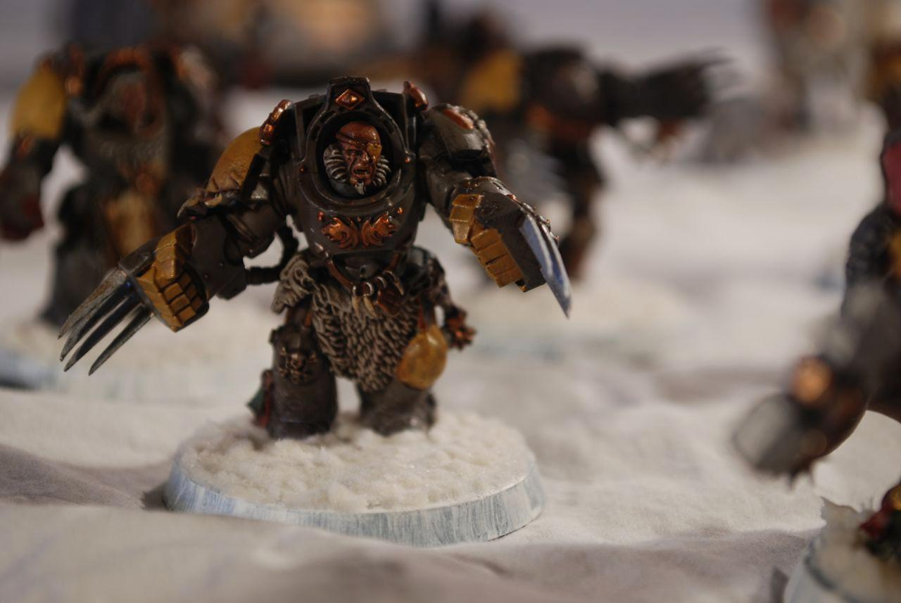 Lightning Claw, Space Marines, Space Wolves, Terrminator, Warhammer 40,000, Wolf Guard