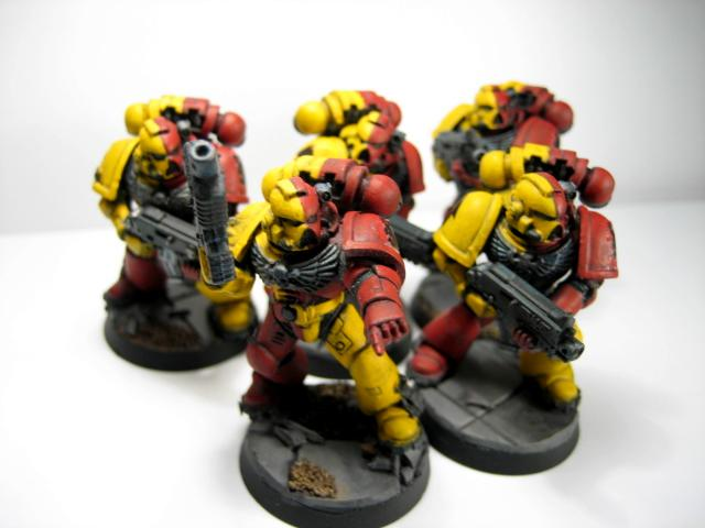 Howling Griffons Chapter, Space Marines, Tactical, Work In Progress
