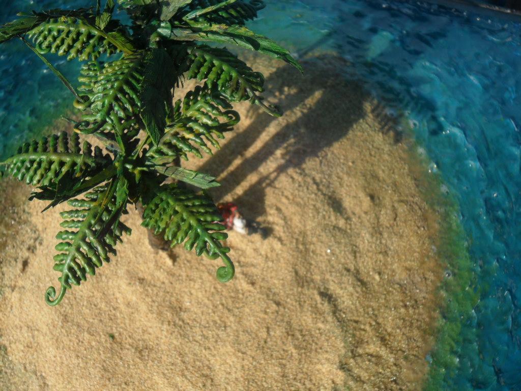 Plants, Sand, Terrain