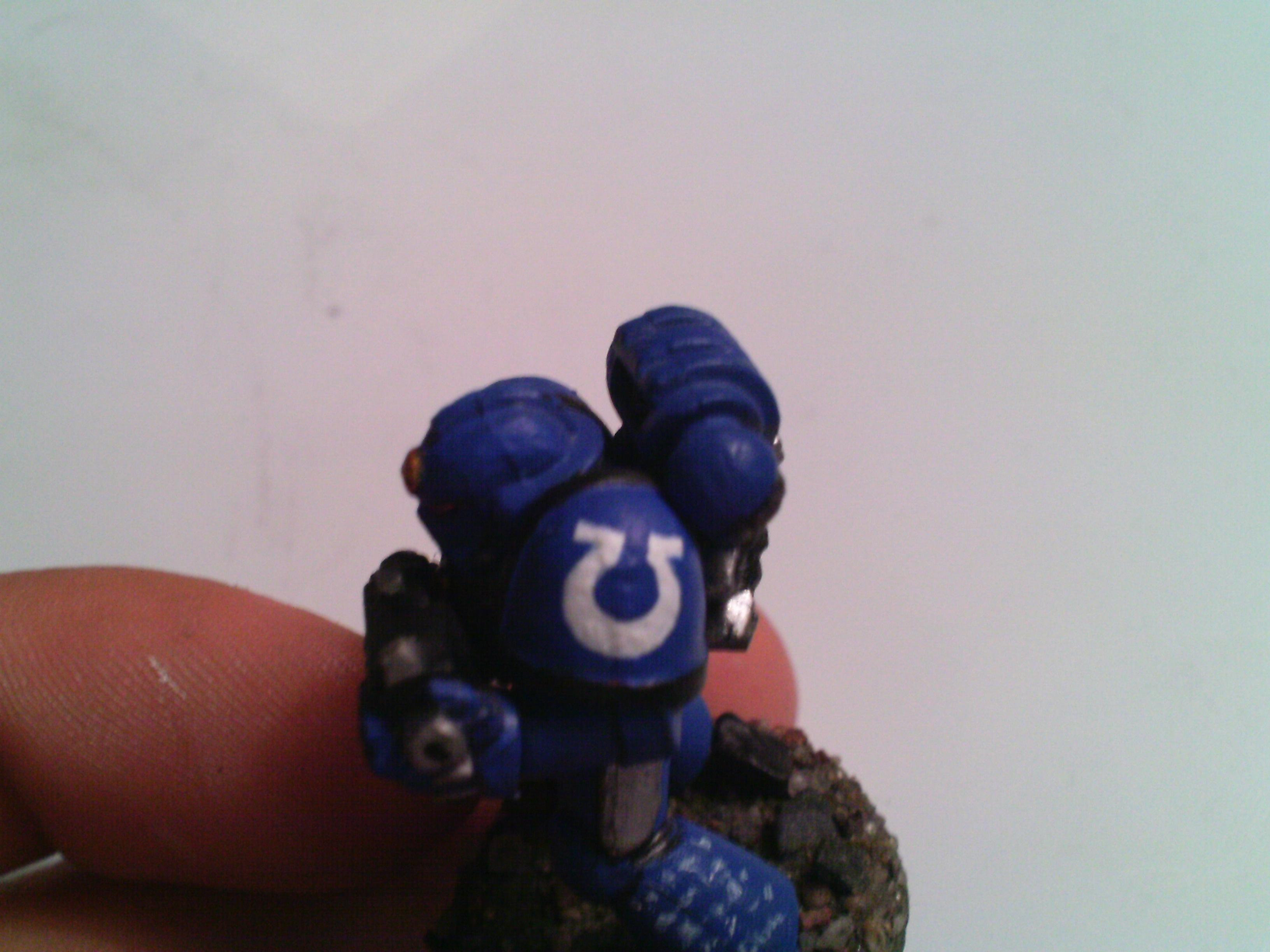 Then I go over it again in blue and edge out the details