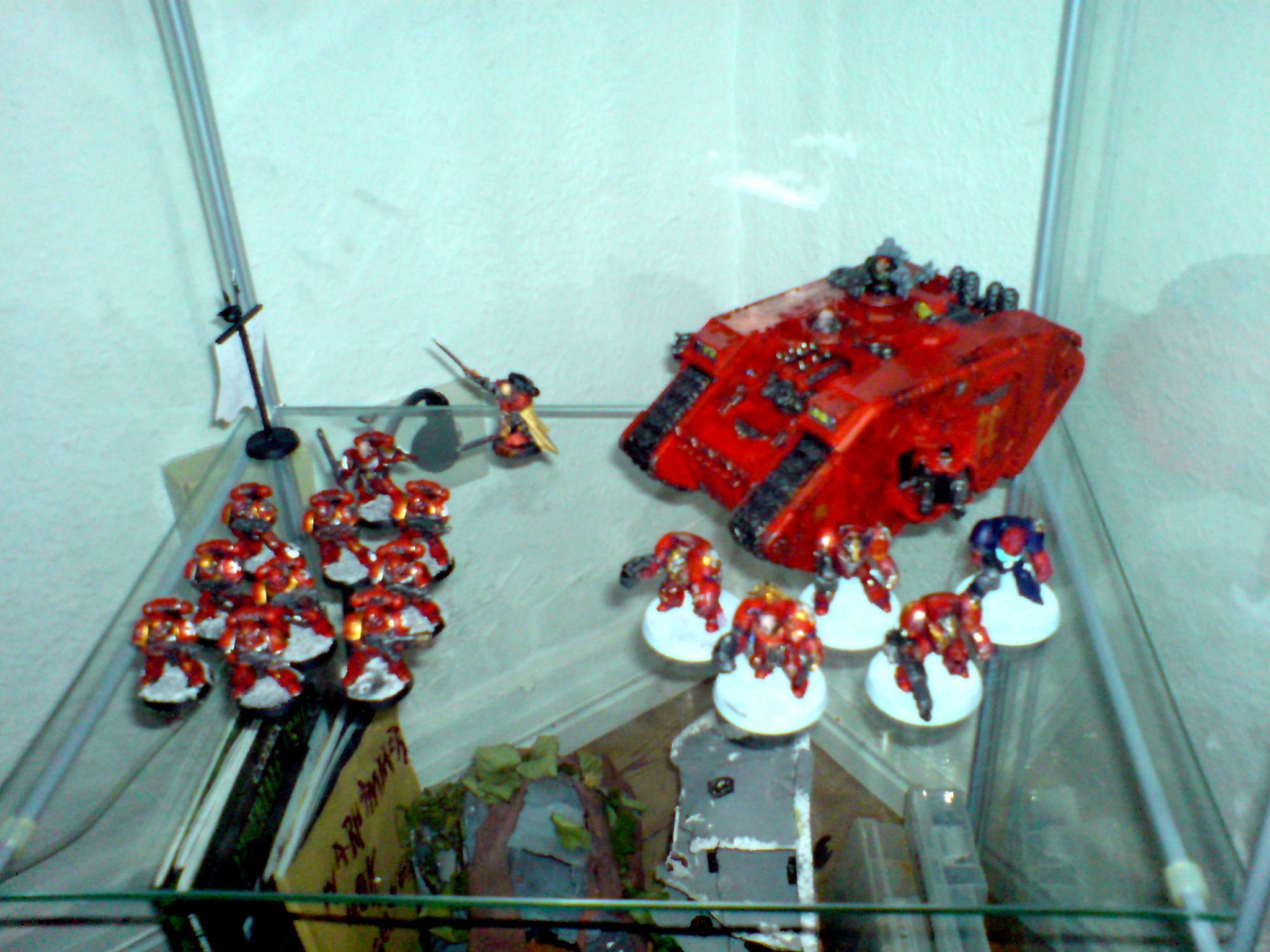 Space Marines, Space Marines 40k