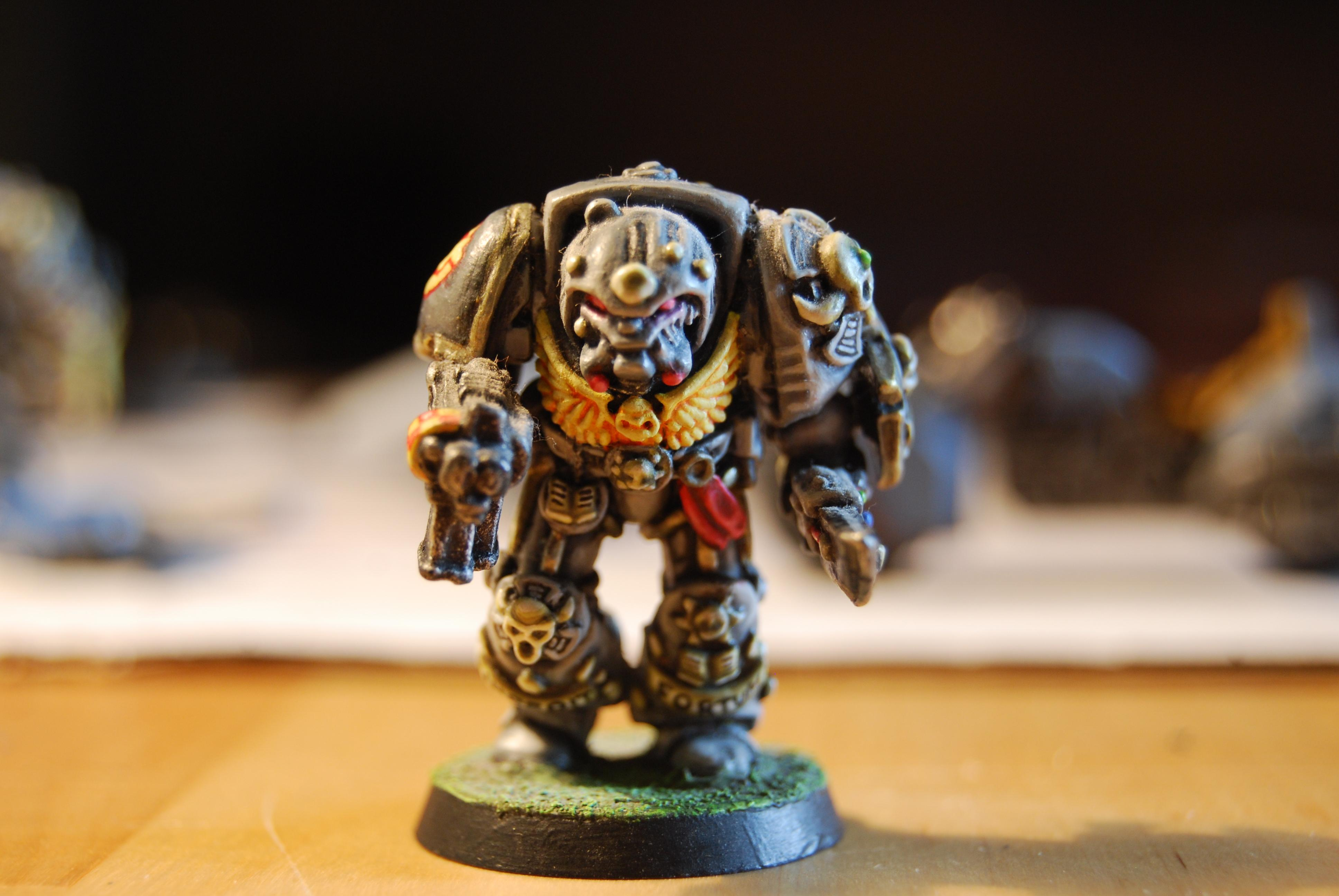 Librarian, Rogue Trader, Space Wolves, Terminator Armor, Wolf Priest