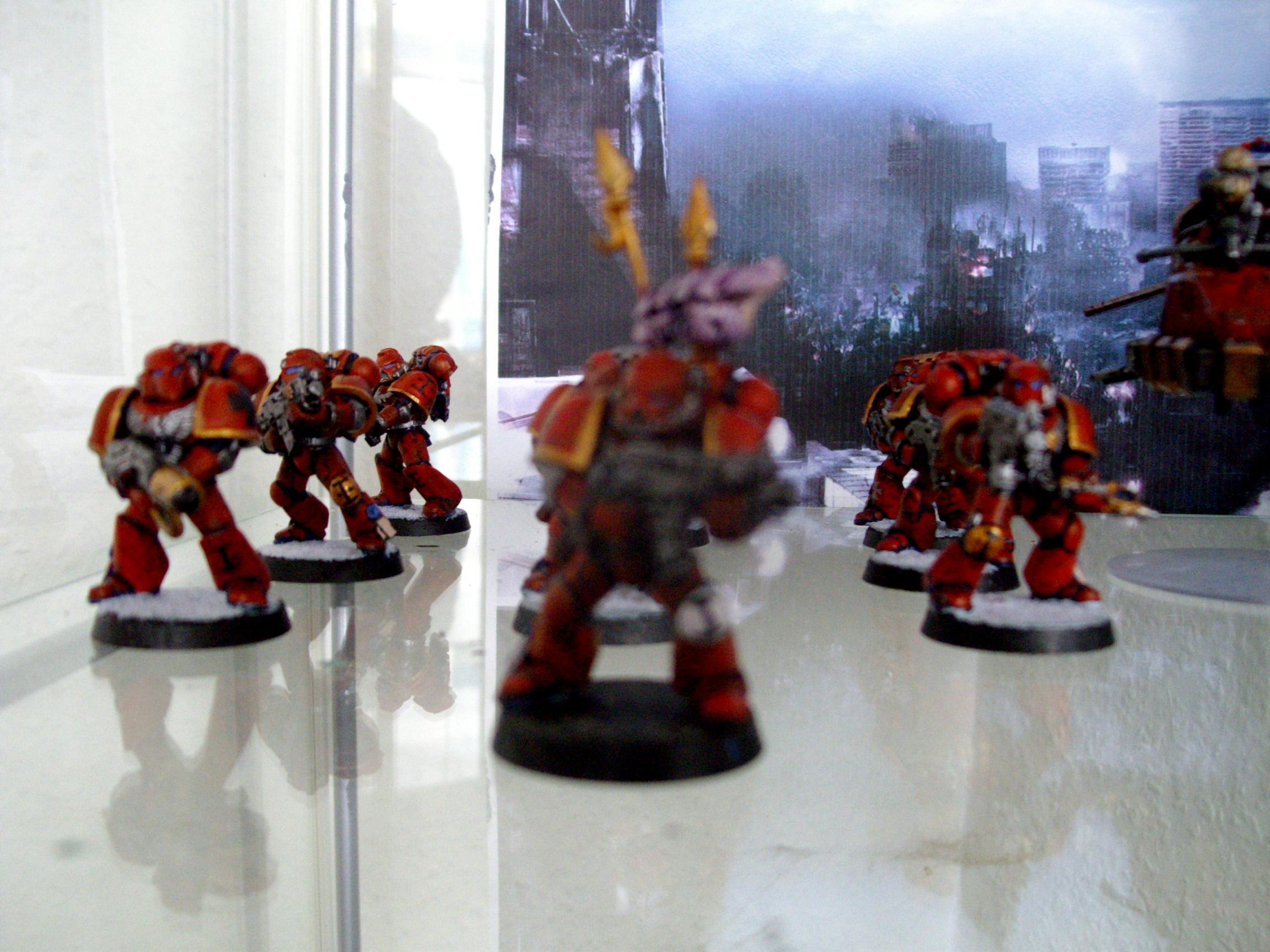 Space Marines, Tyranidskull