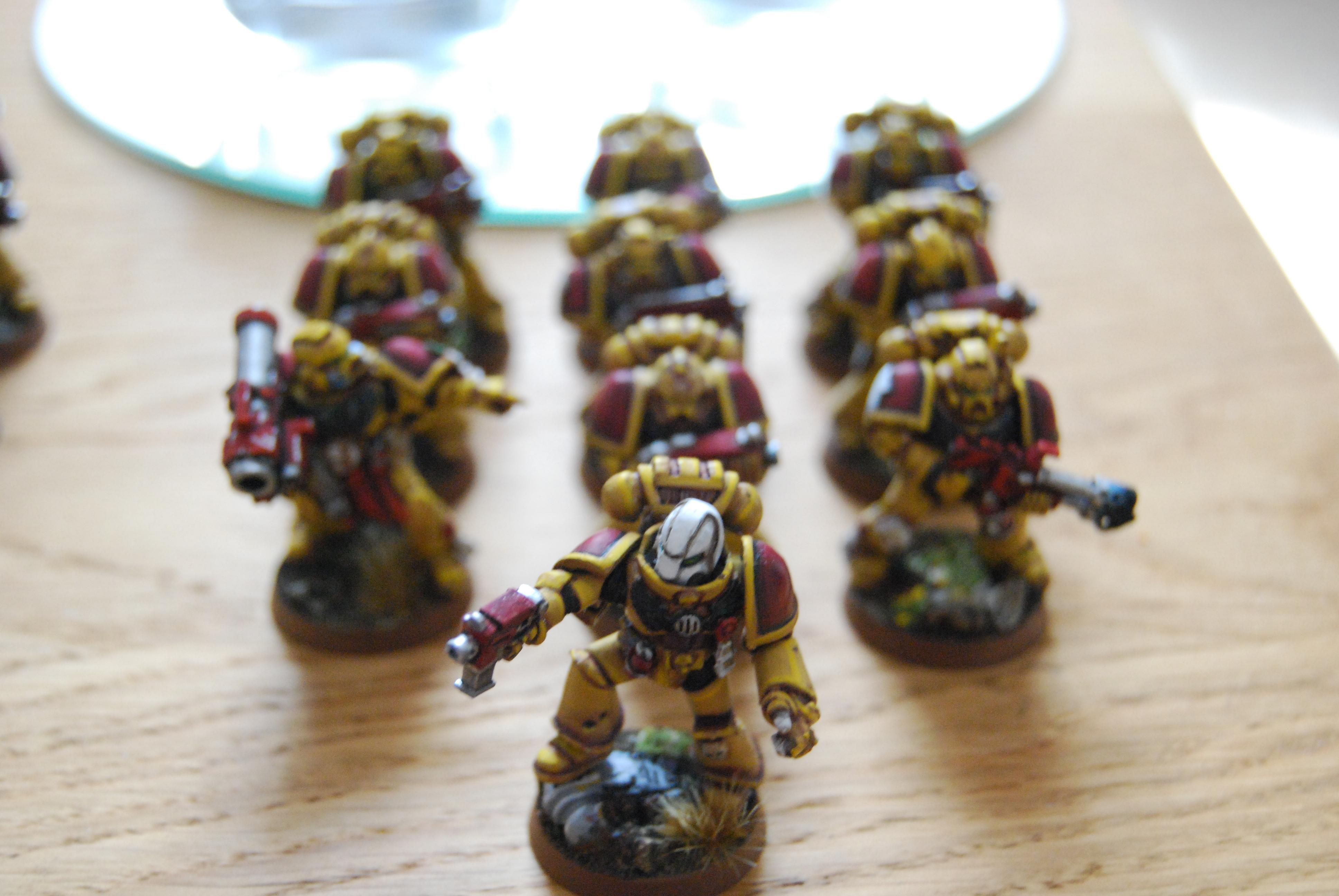 Angel, Lion, Space Marines, Tactical, Yellow