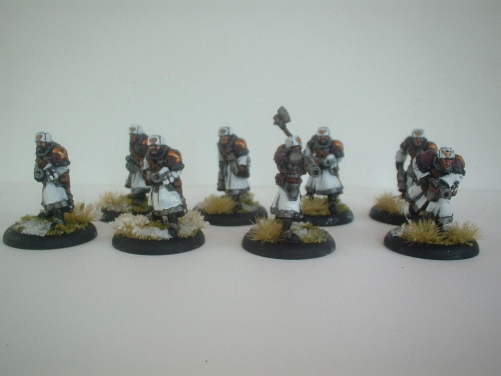 8 Winter Guard. Need another 2 to complete the unit. Have the attachments to paint up once they arrive