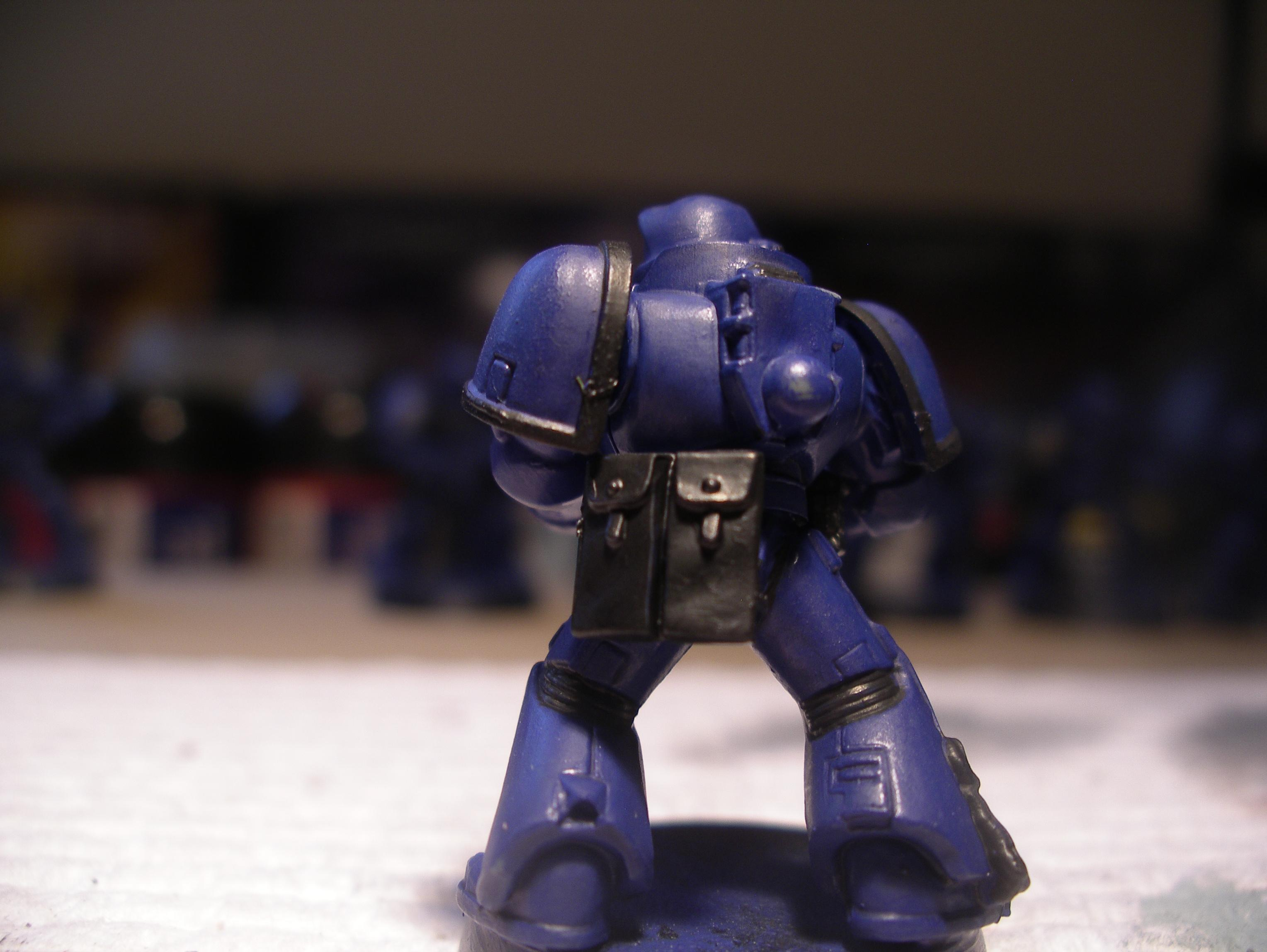 marine example back