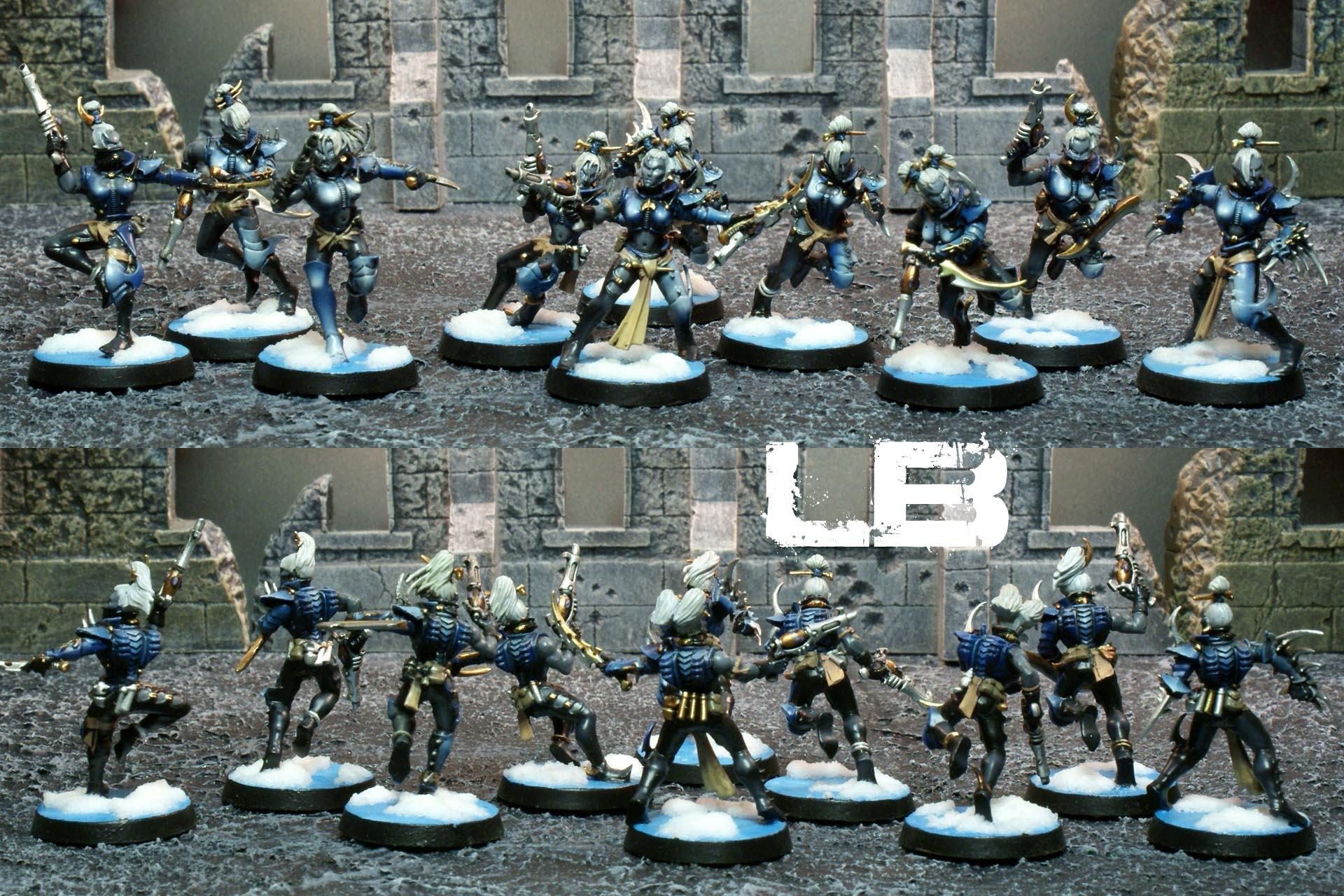 Awesome Paint Job, Awesomepaintjob.com, Close Combat Squad, Dark Eldar, Dark Eldar Drow, Drow, Ice, Ice Theme, Kabalite, Les Bursley, Lowkeyy, Martin Harris, Scourge, Snow, Snow Theme, Solarite, The Frozen Fang, Trueborn, Vanhammer, Wych