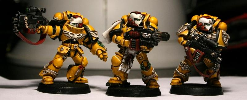 Imperial Fists, Stern Guard, Sternguard