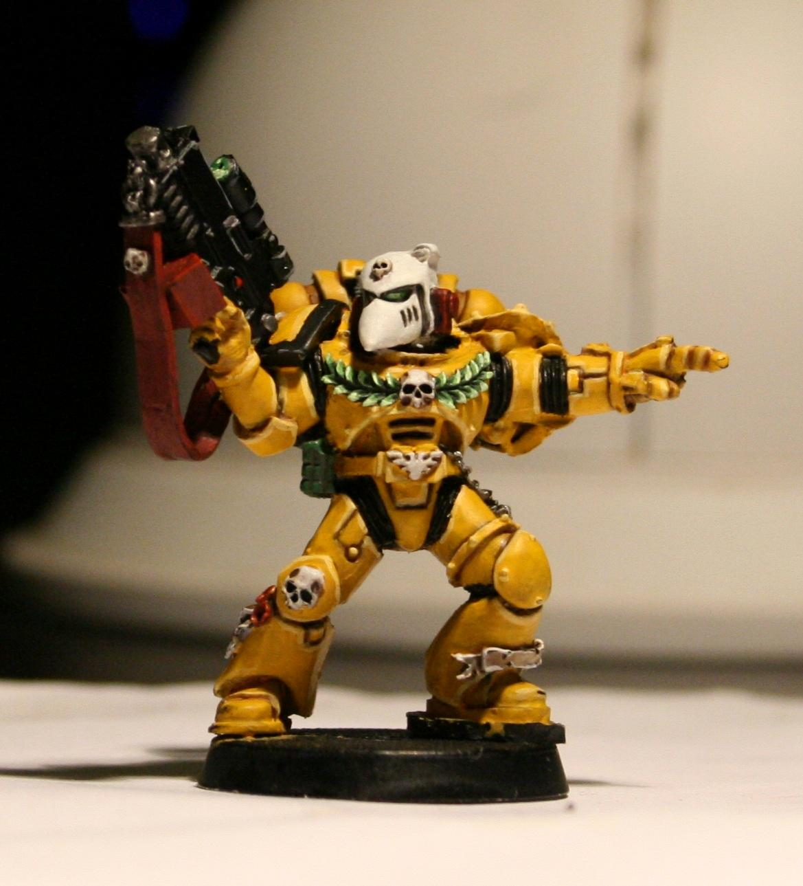Beaky, Imperial Fists, Space Marines, Yellow