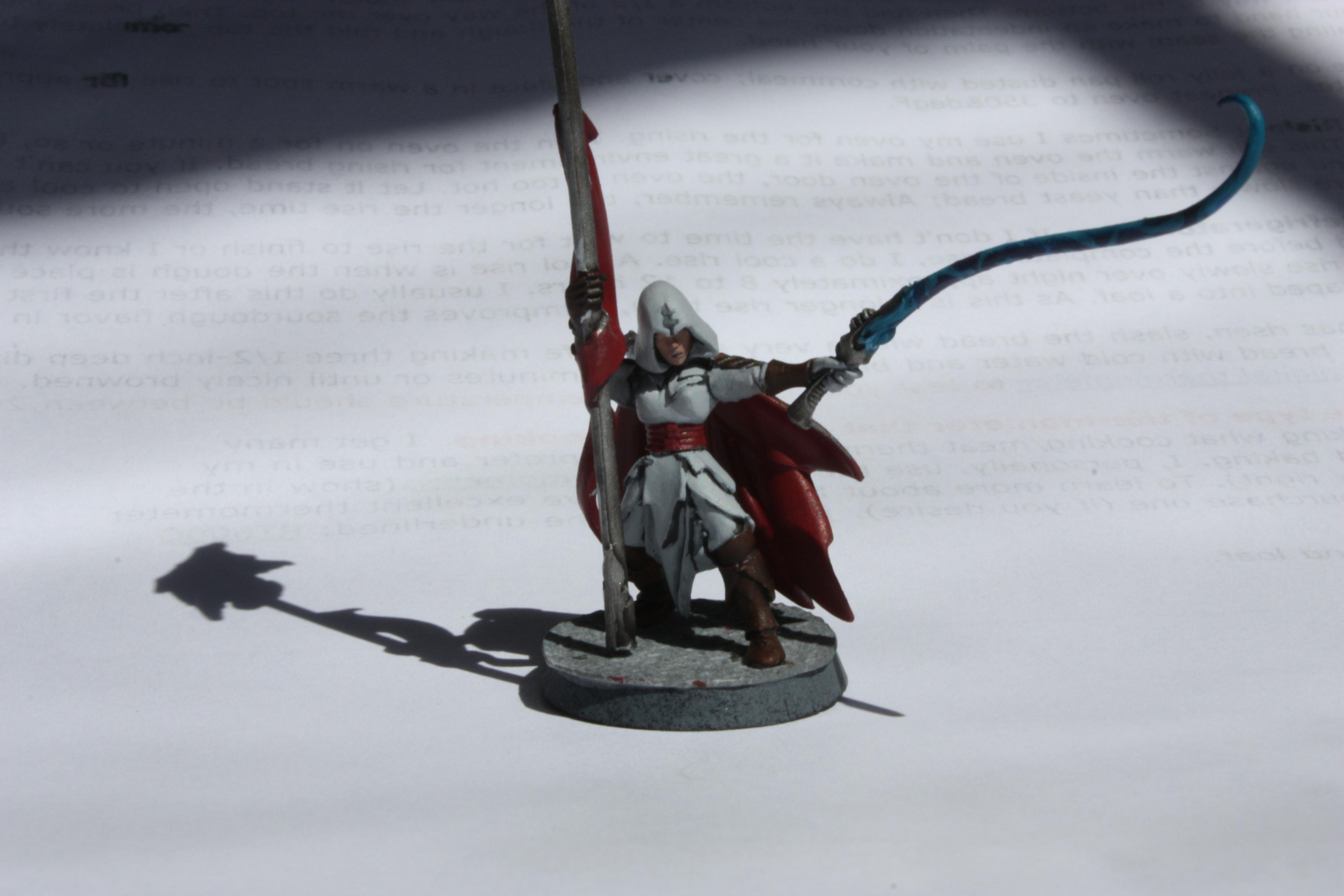 Assassins, Assassins Creed, Banner, Cape, Hood, Whip