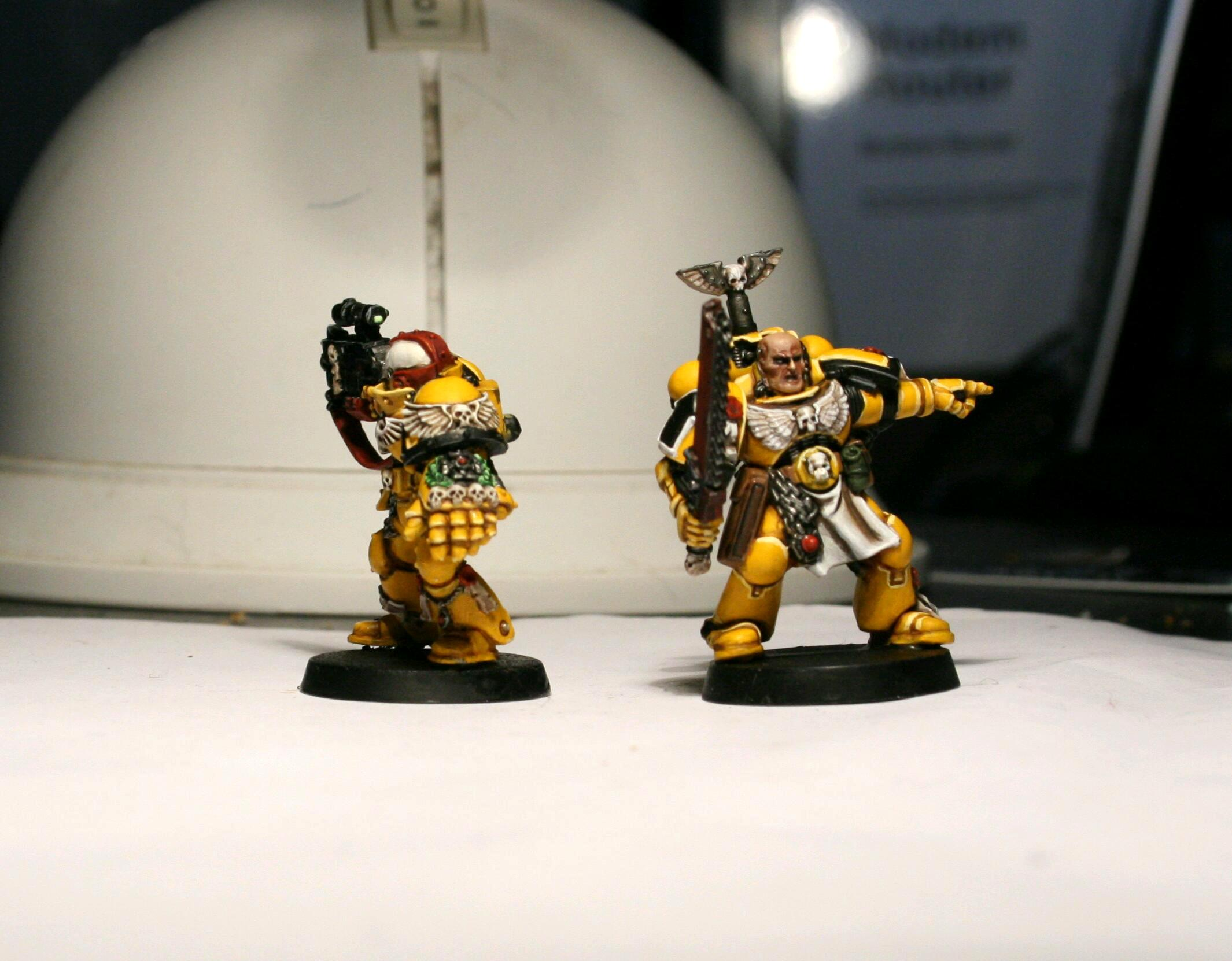 imperial fists sternguard  and sergeantt