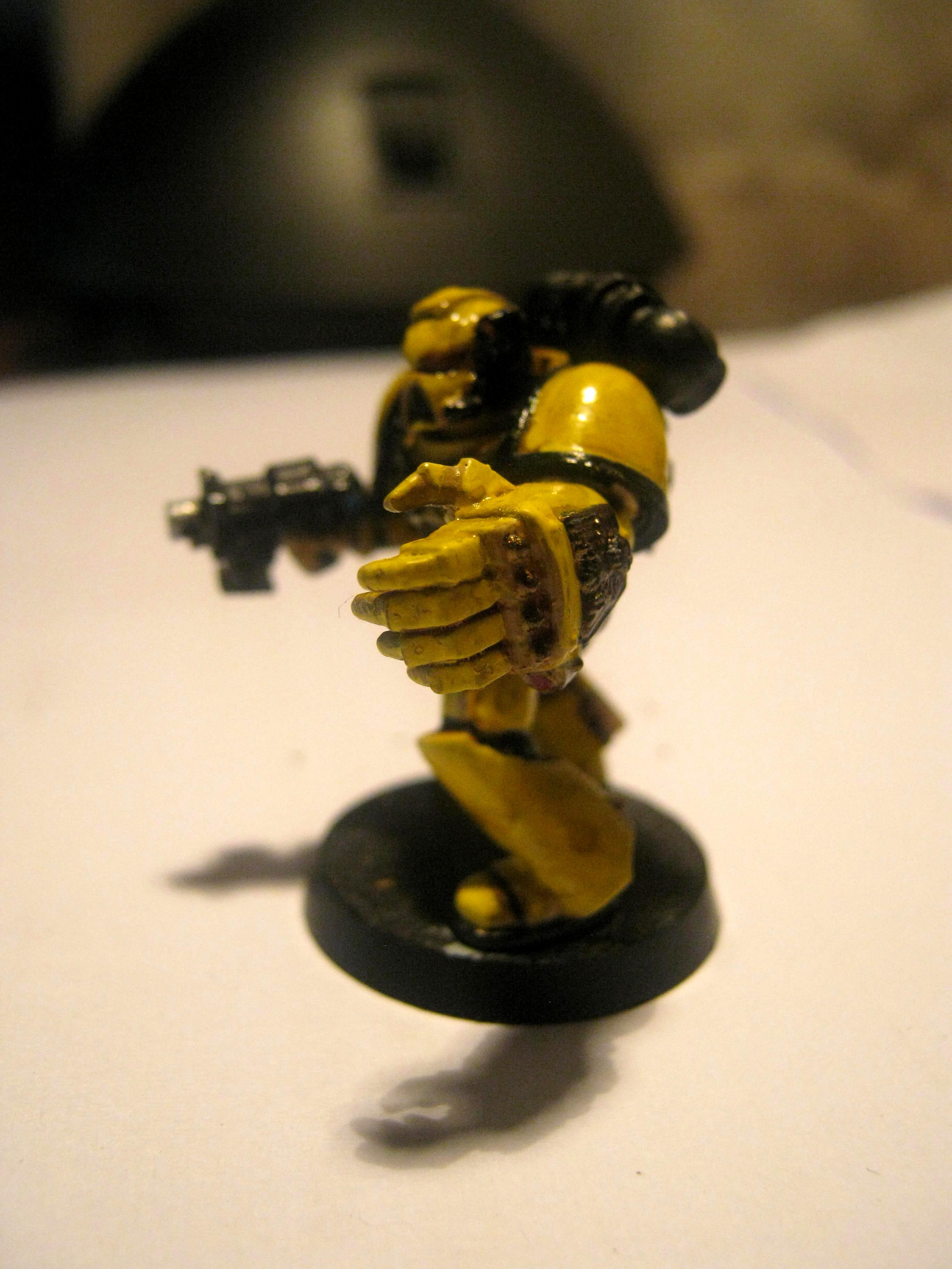 wip imperial fist