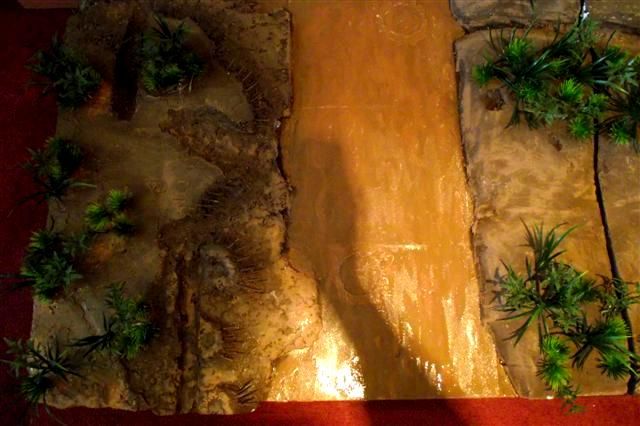 Board, Jungle, Terrain, Warhammer 40,000, Warhammer Fantasy