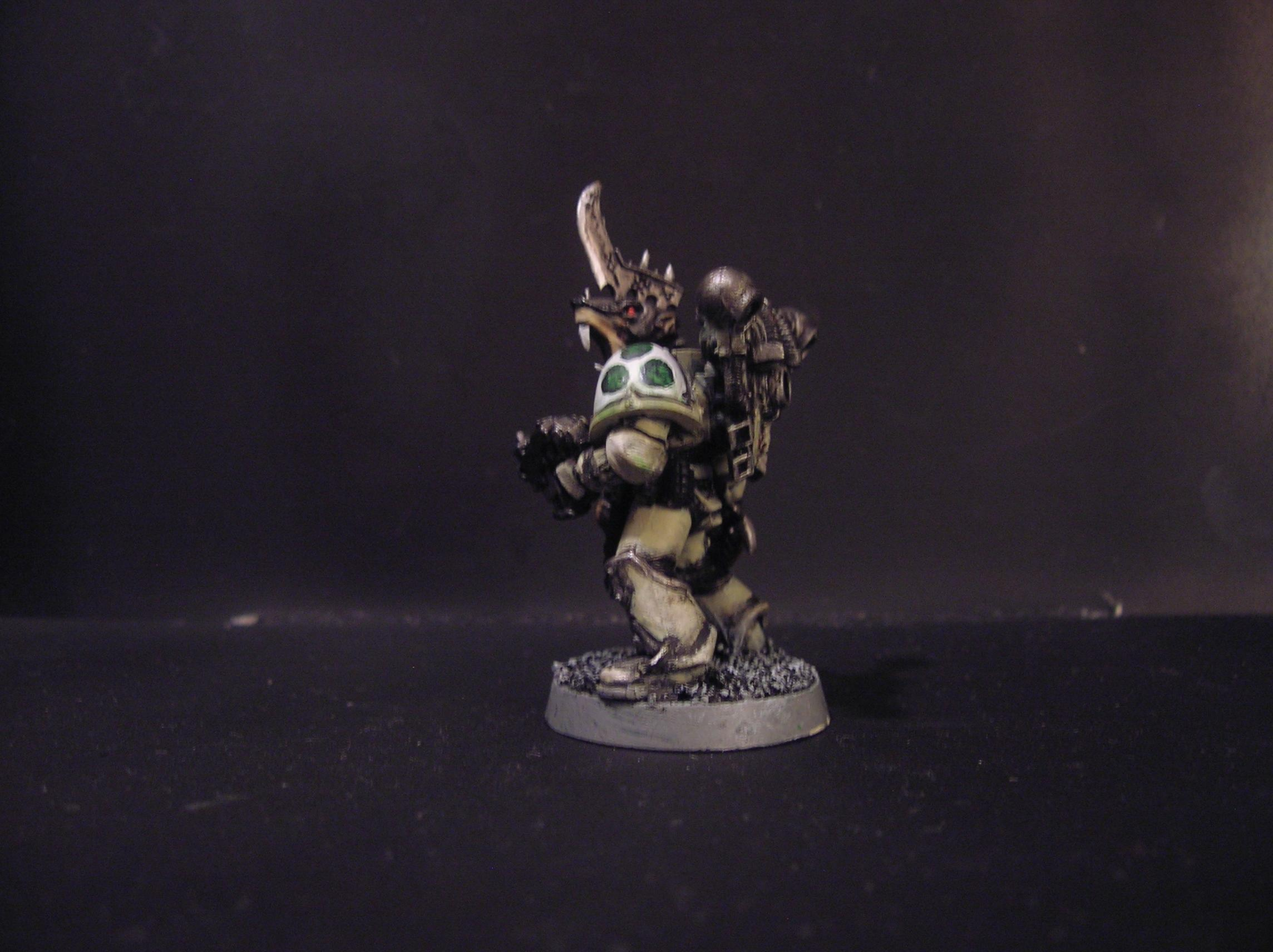 Nurgle, Plague Marines