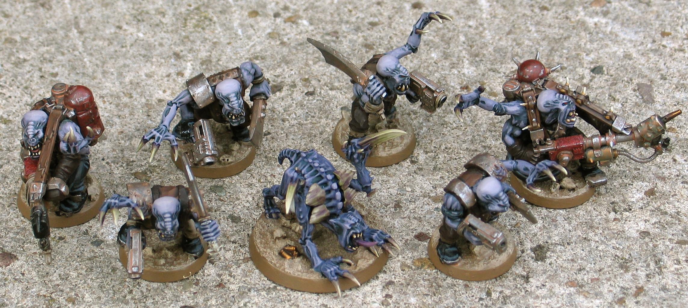 Genestealer Cult, Genestealer Hybrid, Kommandos, Orks, Snikrot