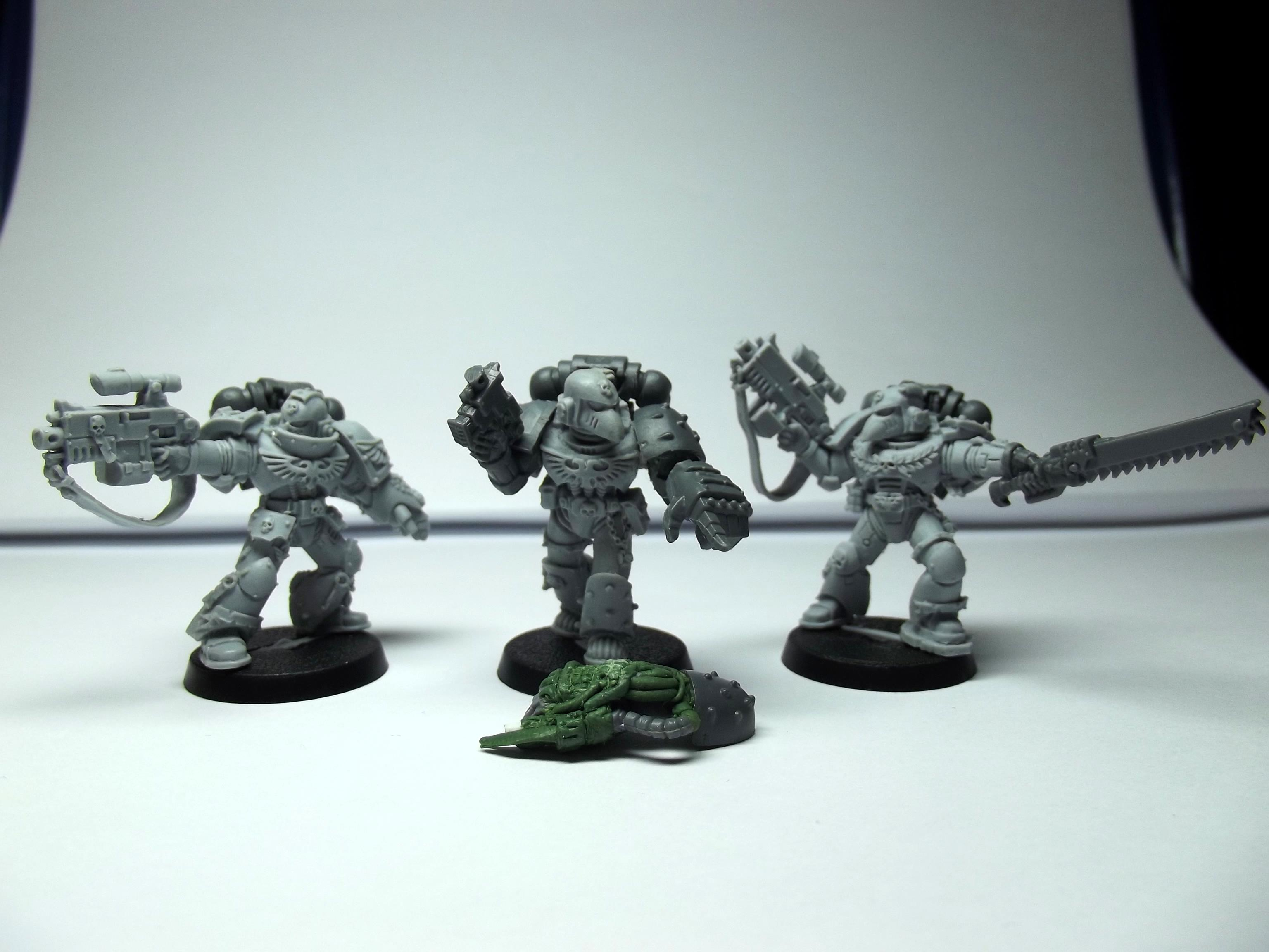 Command Squad, Honour Guard, Sternguard, Veteran