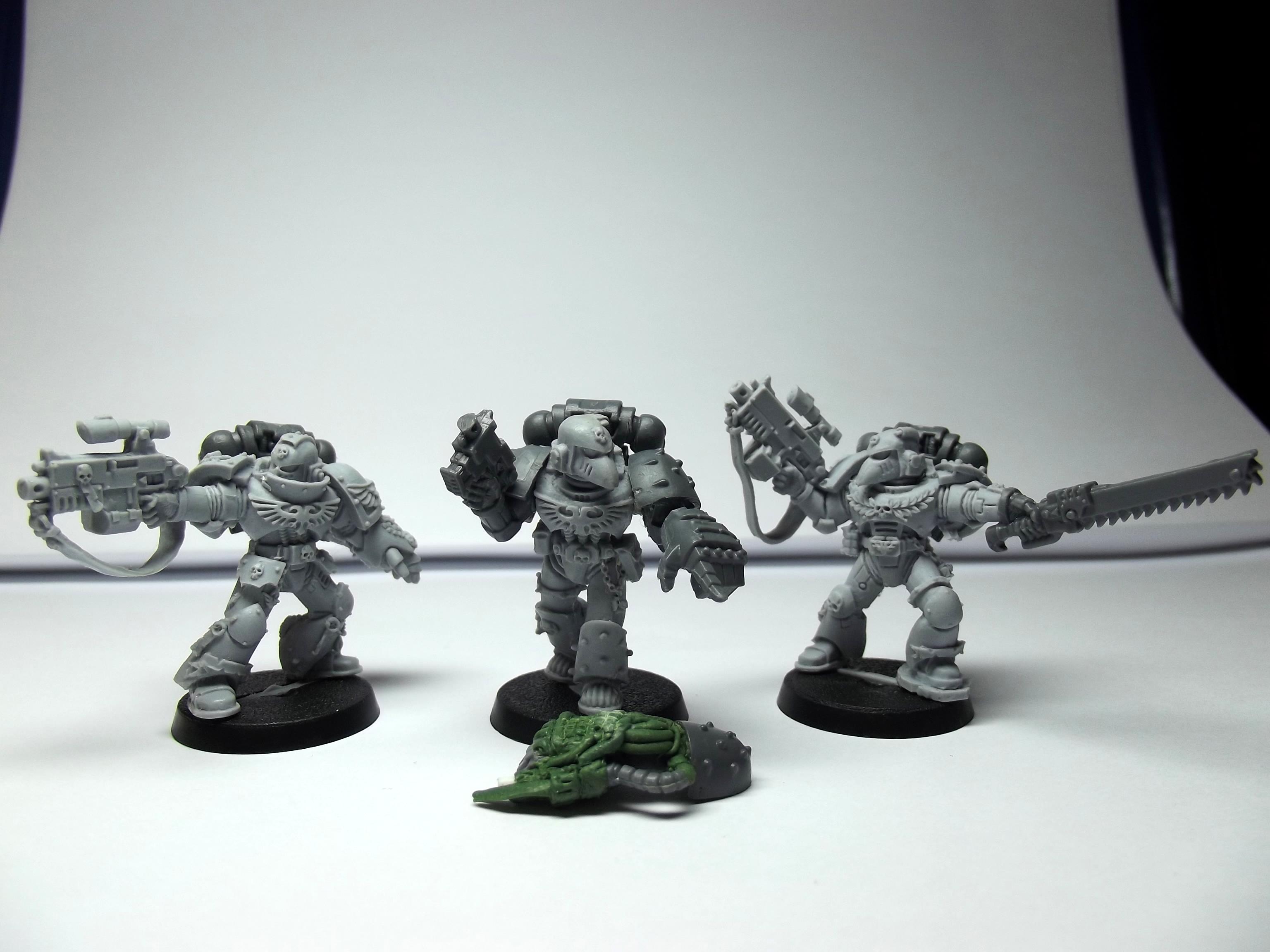 Command Squad, Honour Guard, Sternguard, Veteran