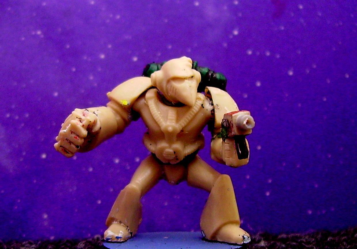 Rogue Trader, Space Marines