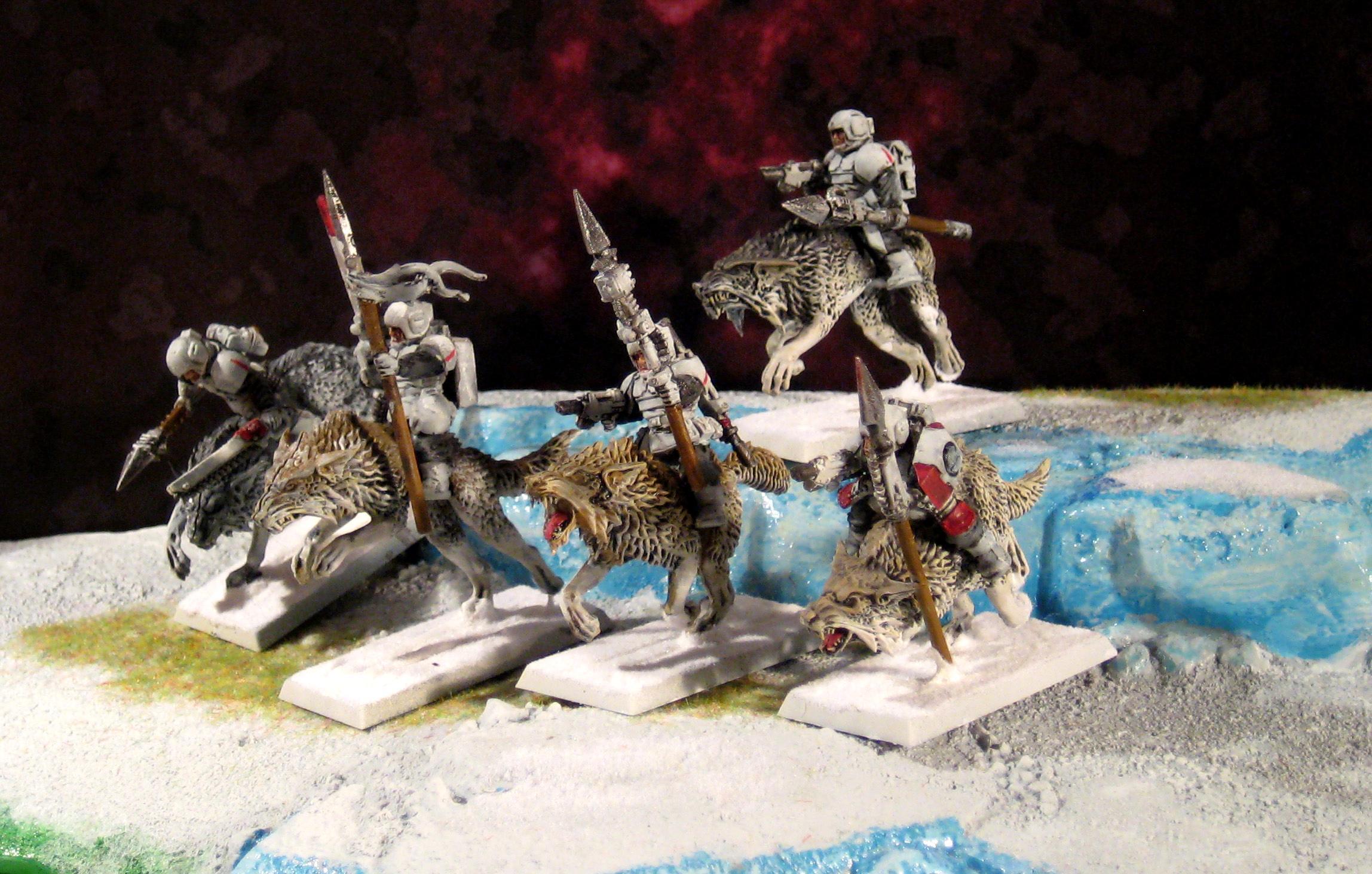 Cadians, Conversion, Empire, Fenrisian Wolves, Gue'vesa, Guevesa, Imperial Guard, Kroot, Rough Riders, Snow, Tau, Tau Empire, White, Wolves