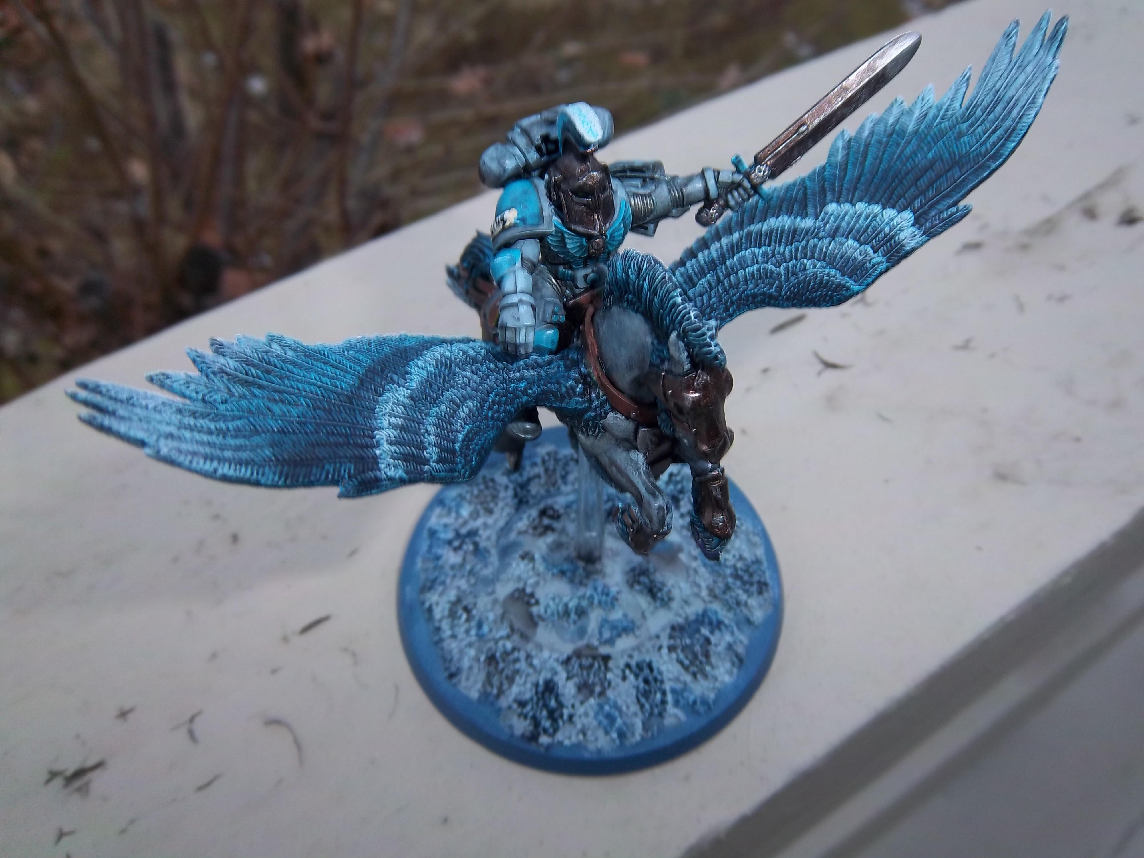 40k Pegasus