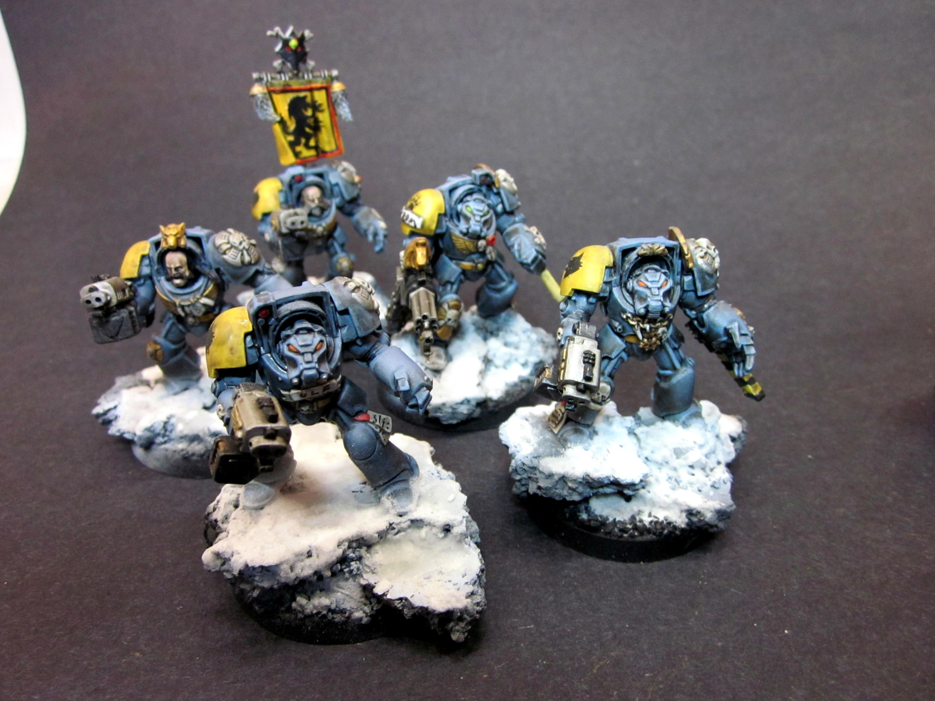 Space Wolves Terminators