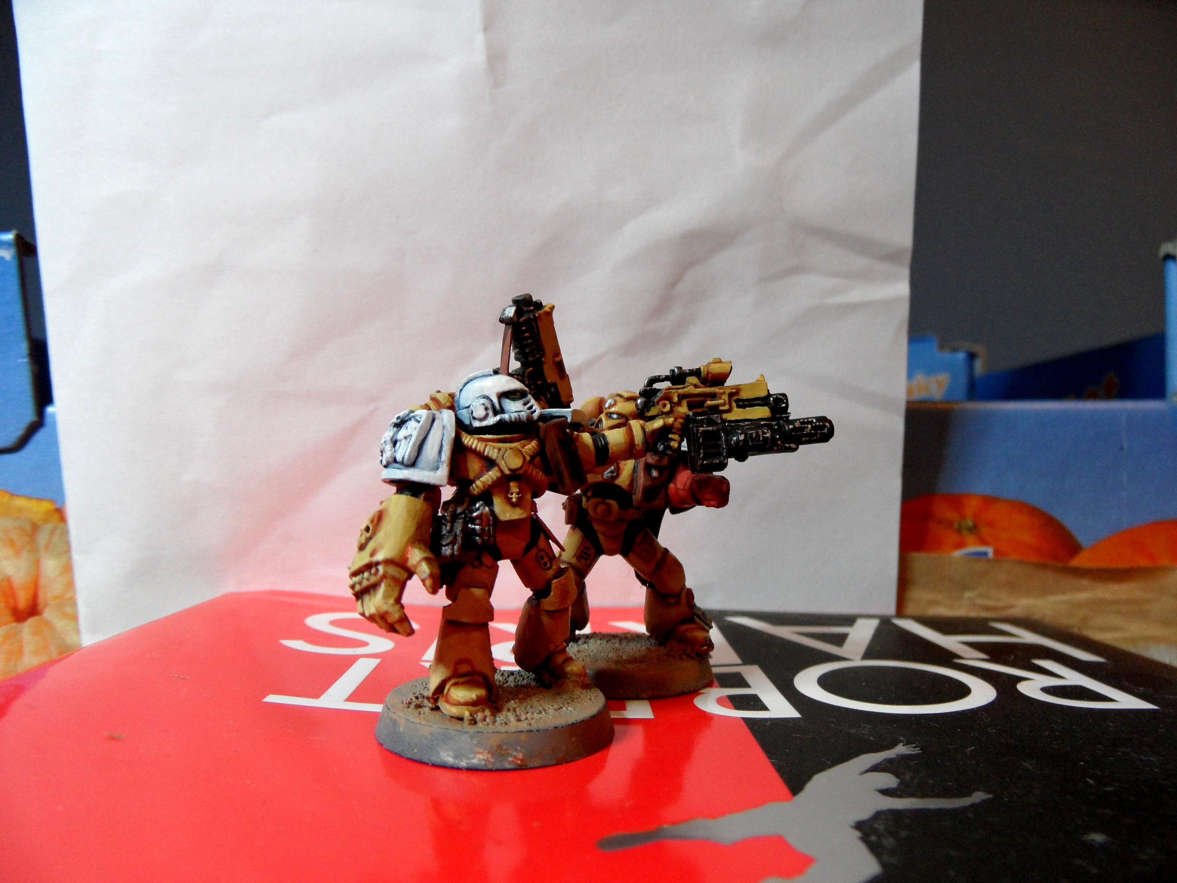 Space Marines, Sternguard, Veteran