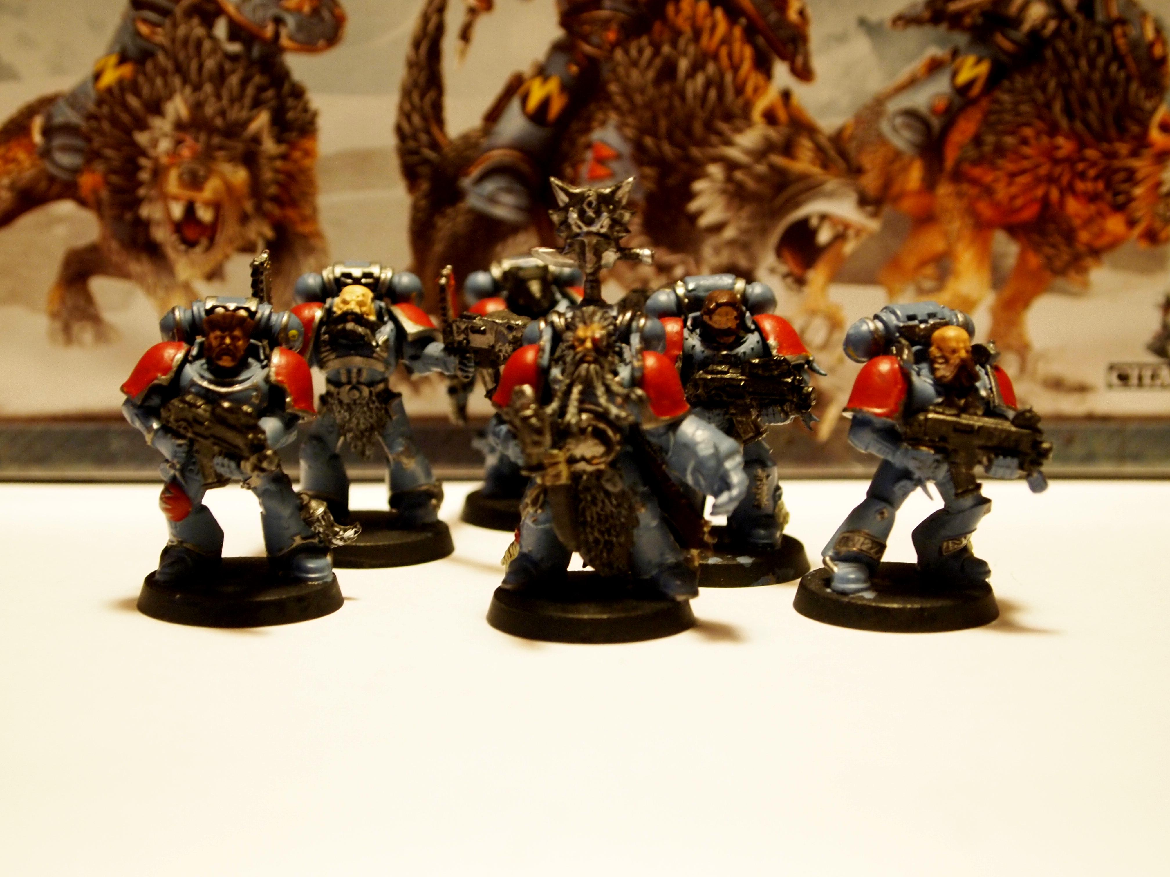 Grey Hunters, Space Wolves