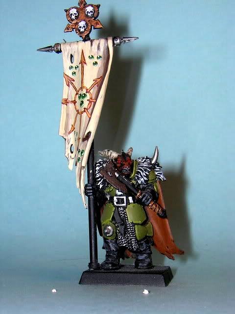 Warriors Of Chaos, Chaos warrior banner