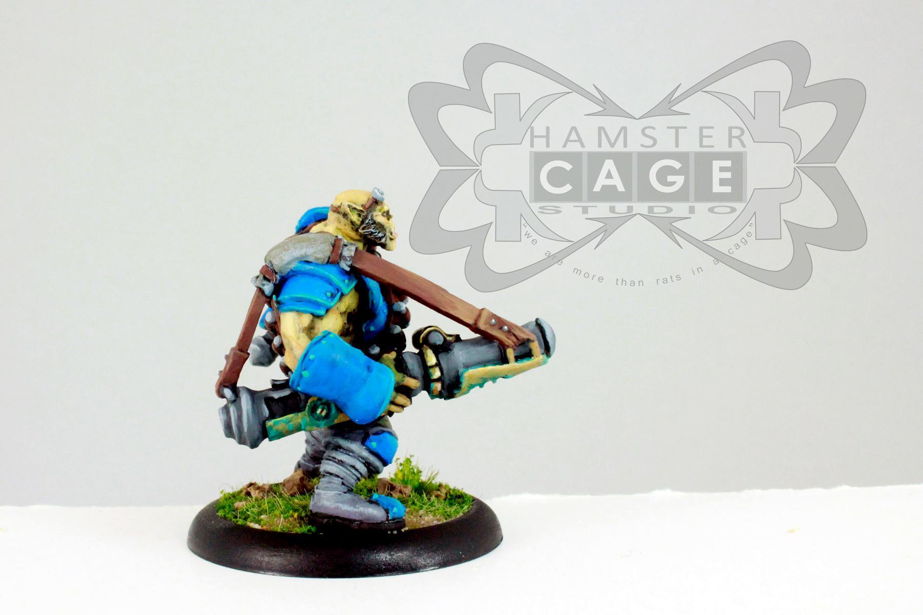 Cygnar, Mercenary