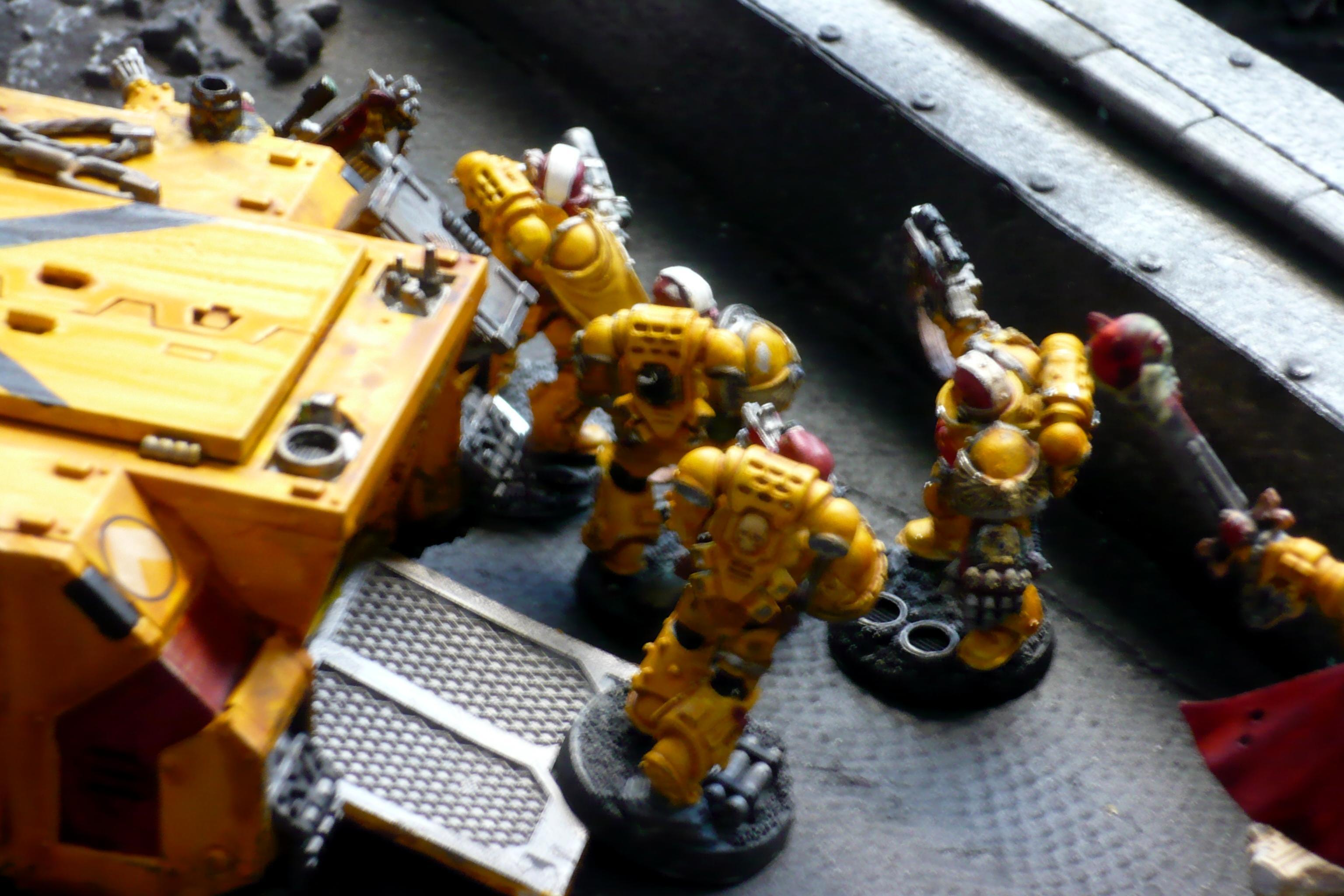 Banana Boat Marines, Impiral Fists, Space Marines, Warhammer 40,000
