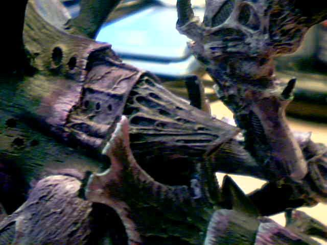 Forge World, Hierodule, Leviathen, Tyranids