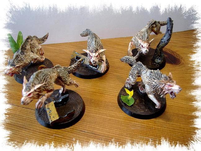 Skyrar's Dark Wolves, Space Wolves, Wolves