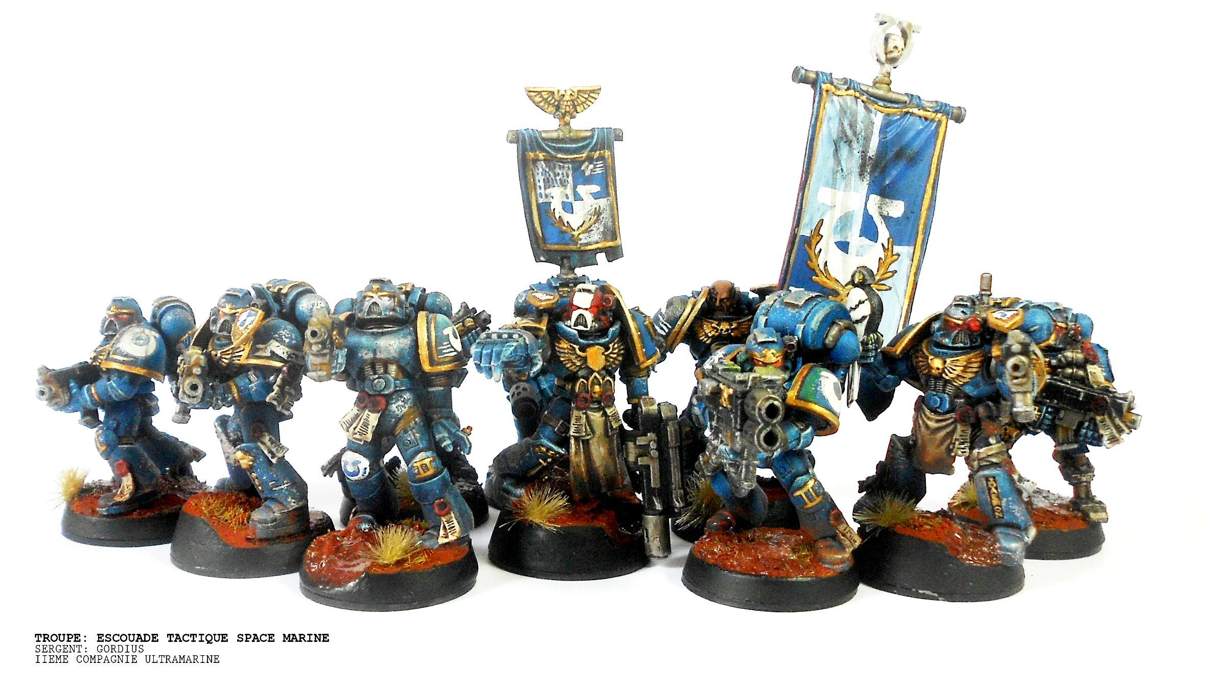 Command, Squad, Standard, Ultramarines, Veteran