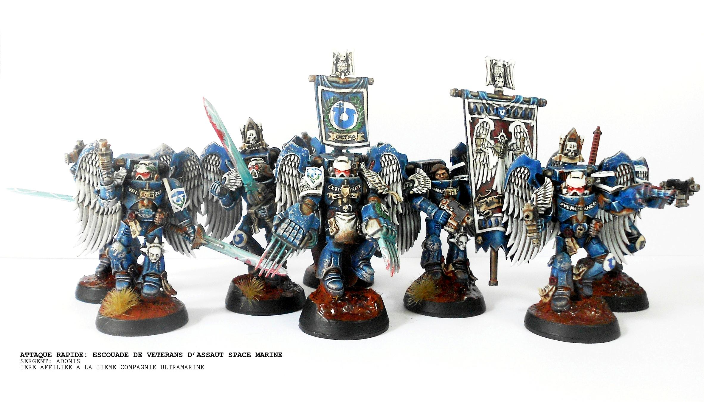 Assault Marines, Banner, Sanguinary Guard, Space Marines, Ultramarines, Winged