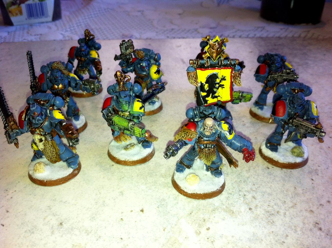 Gh, Grey Hunters, Space Wolves, Sw
