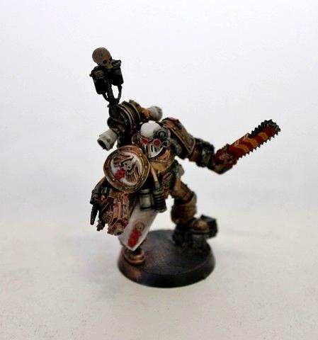 Apothecary, Pro Painted, Space Marines, Warhammer 40,000