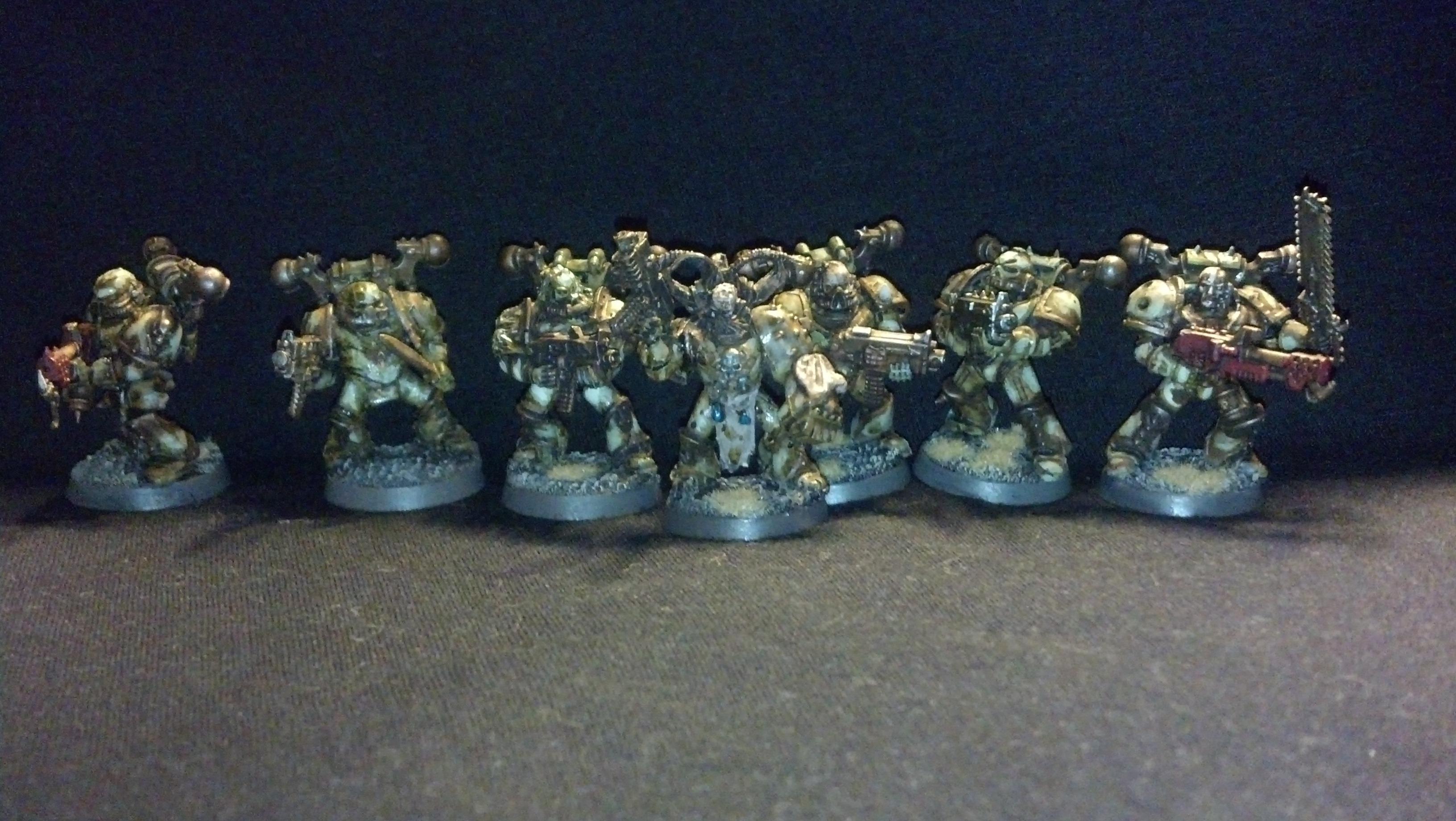 Squad Venerus