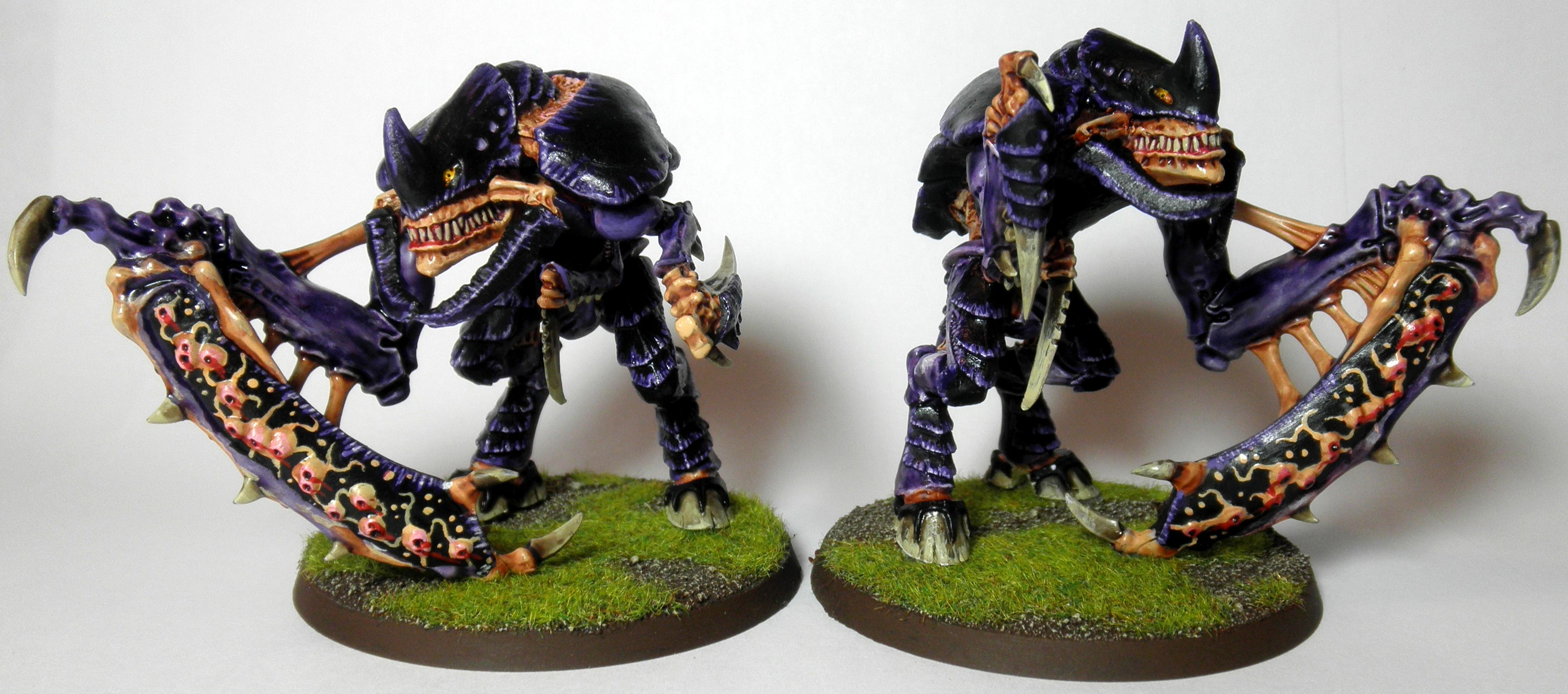 1st, 2nd, Bright, Carnifex, Conversion, Evourer, Purple, Rouge Trader, Shooty, Tyranids