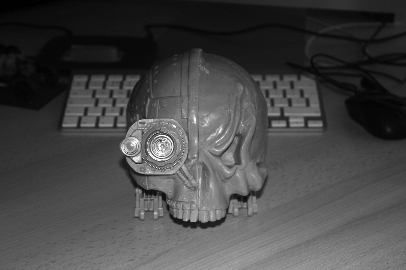 Companion Skull 1 pic1