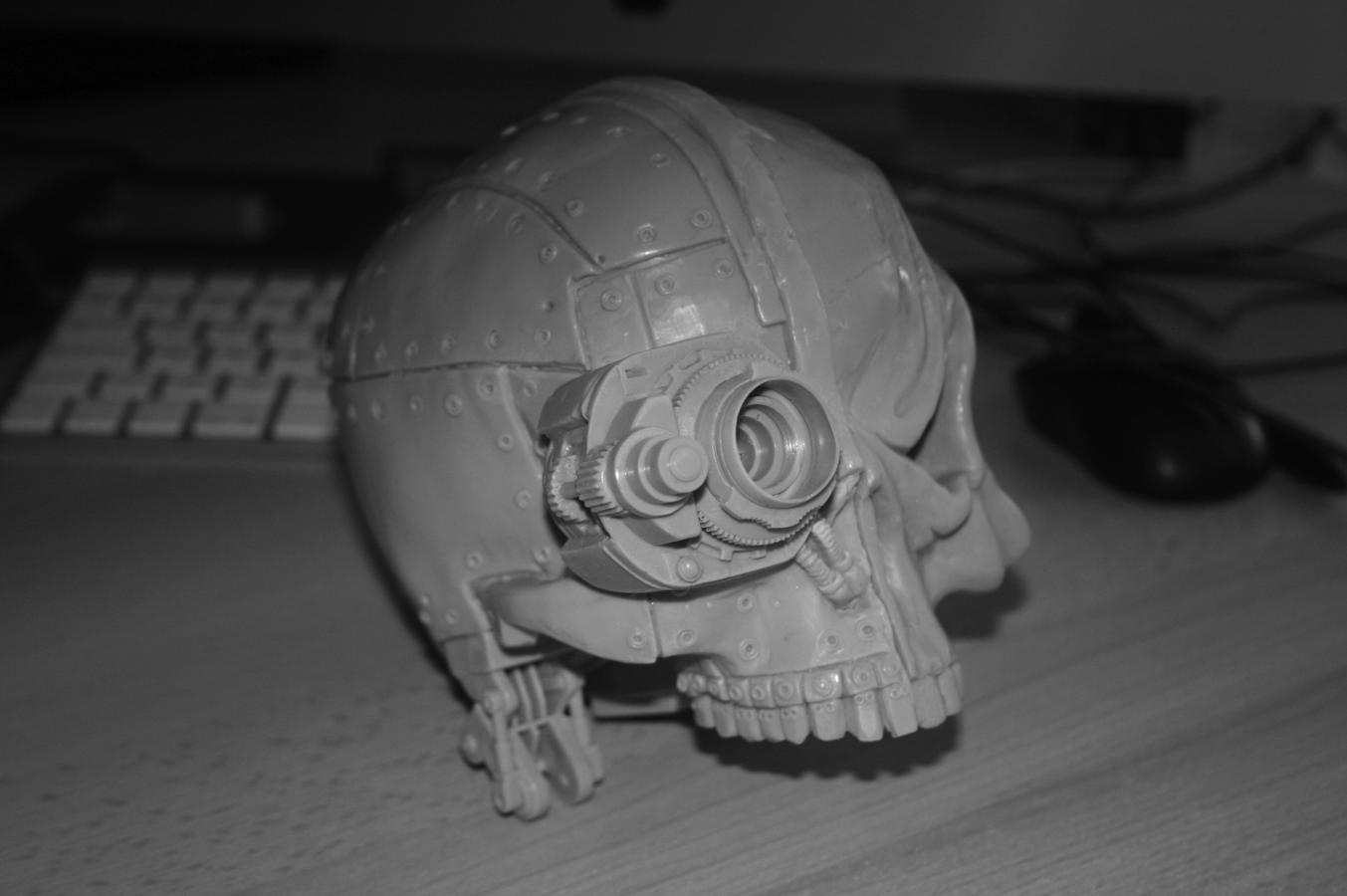 Companion Skull pic 2