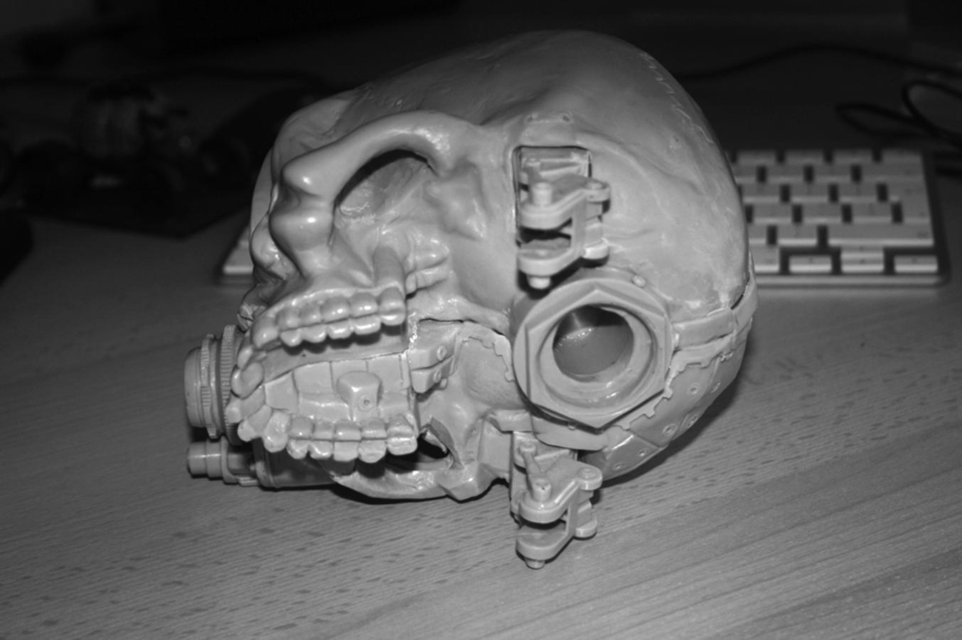 Companion Skull pic 4