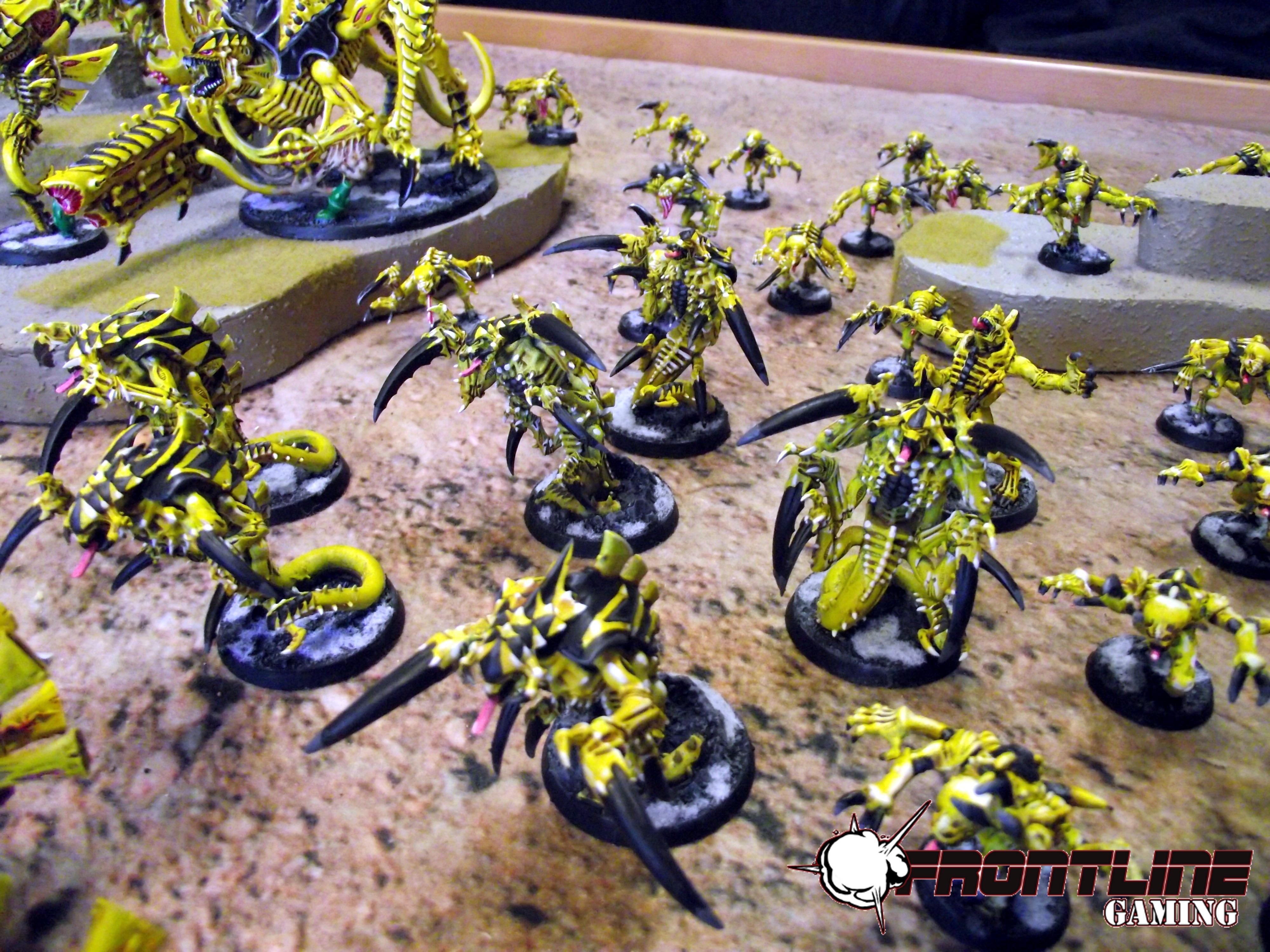 Frontline, Striking, Swarm, Tyranids