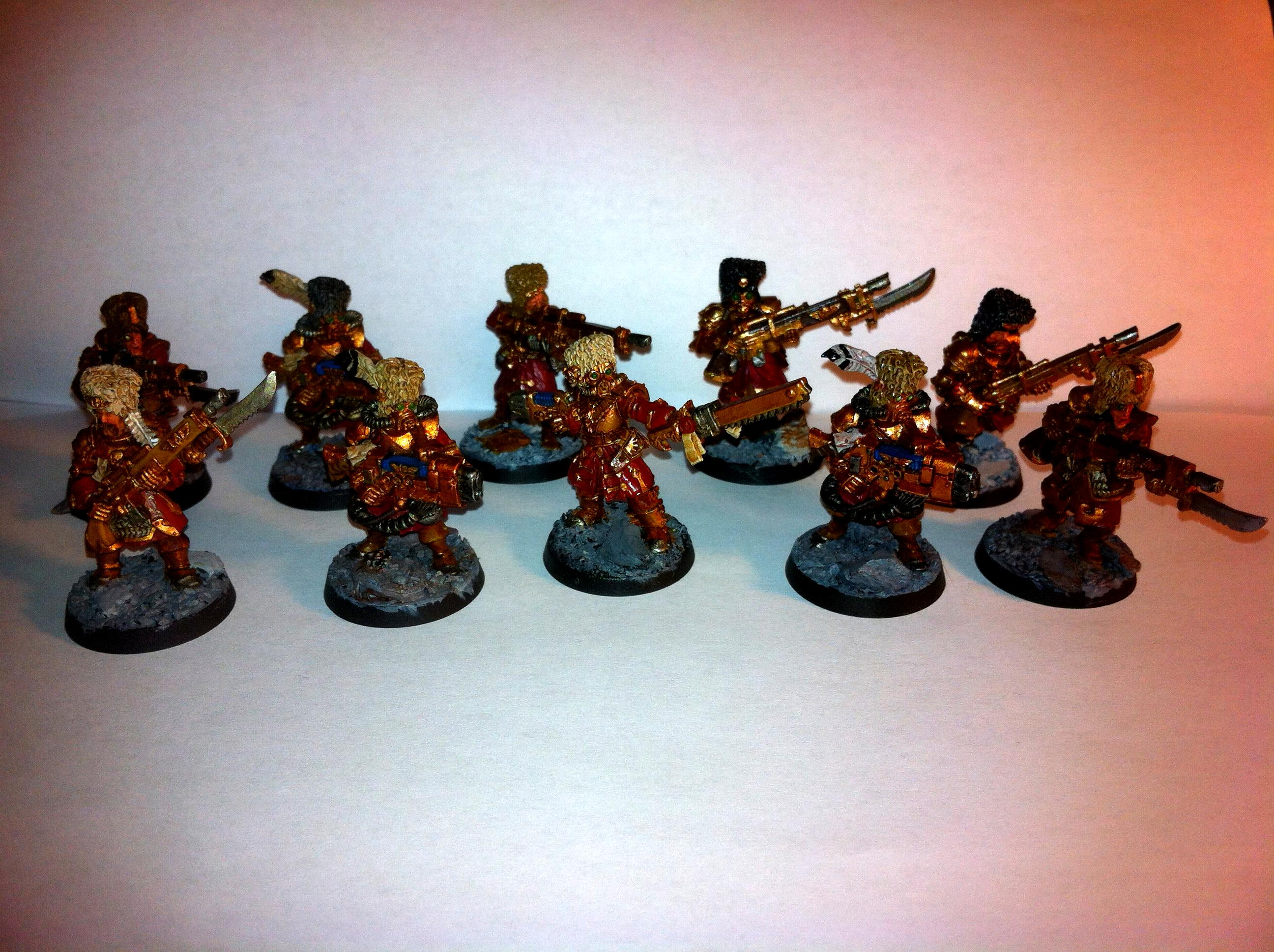 Imperial Guard, Vostroyans