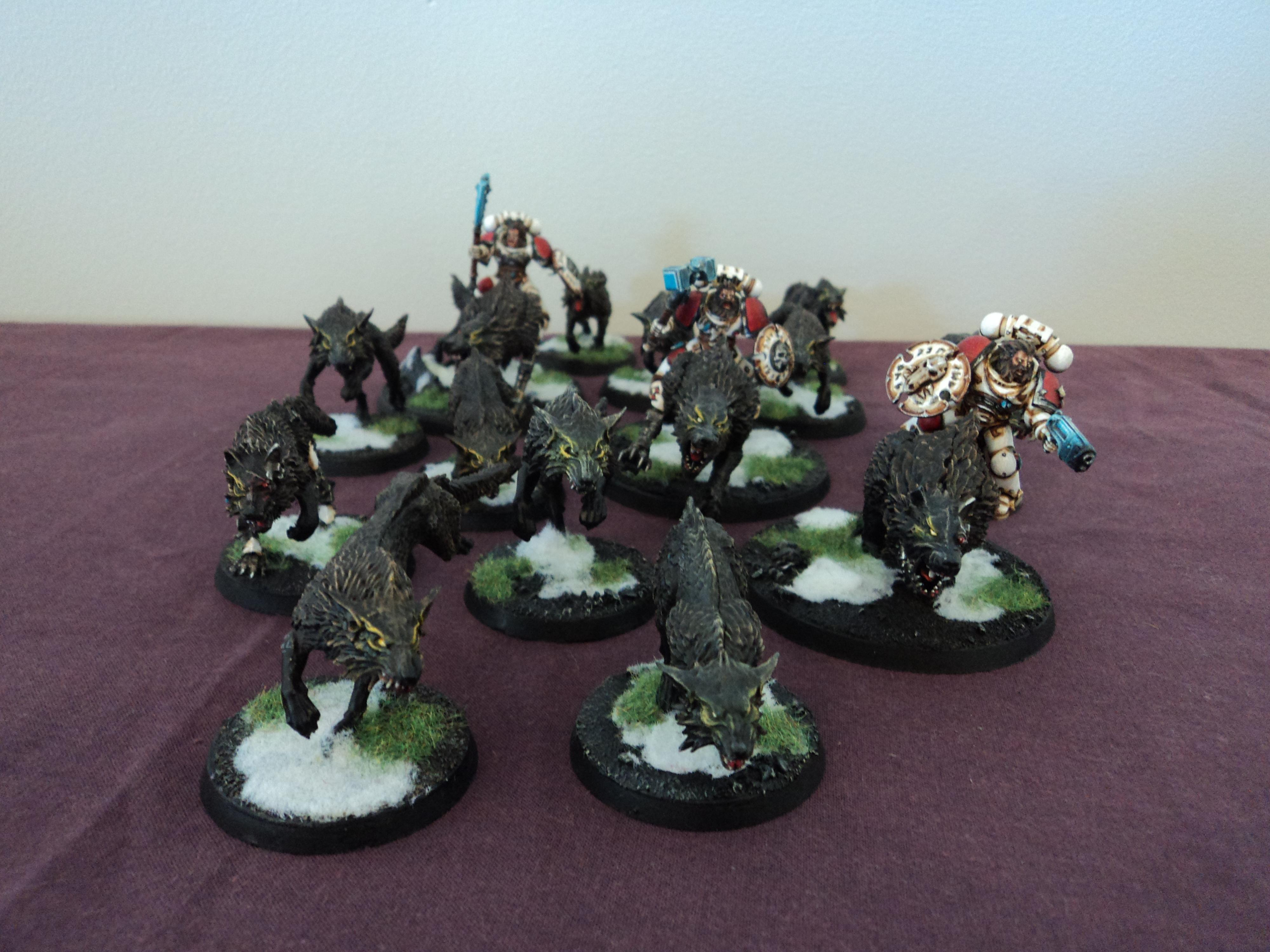 3 Thunderwolf cavalry, 10 Fenrisian Wolves and 1 cyber wolf