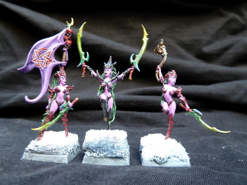 Blood Elves, Blood Vestals, Blutelfen, Dark Elf Witches, Dark Elves, Dunkelelfen, Hexenkriegerinnen, Raging Heroes, Warhammer Fantasy