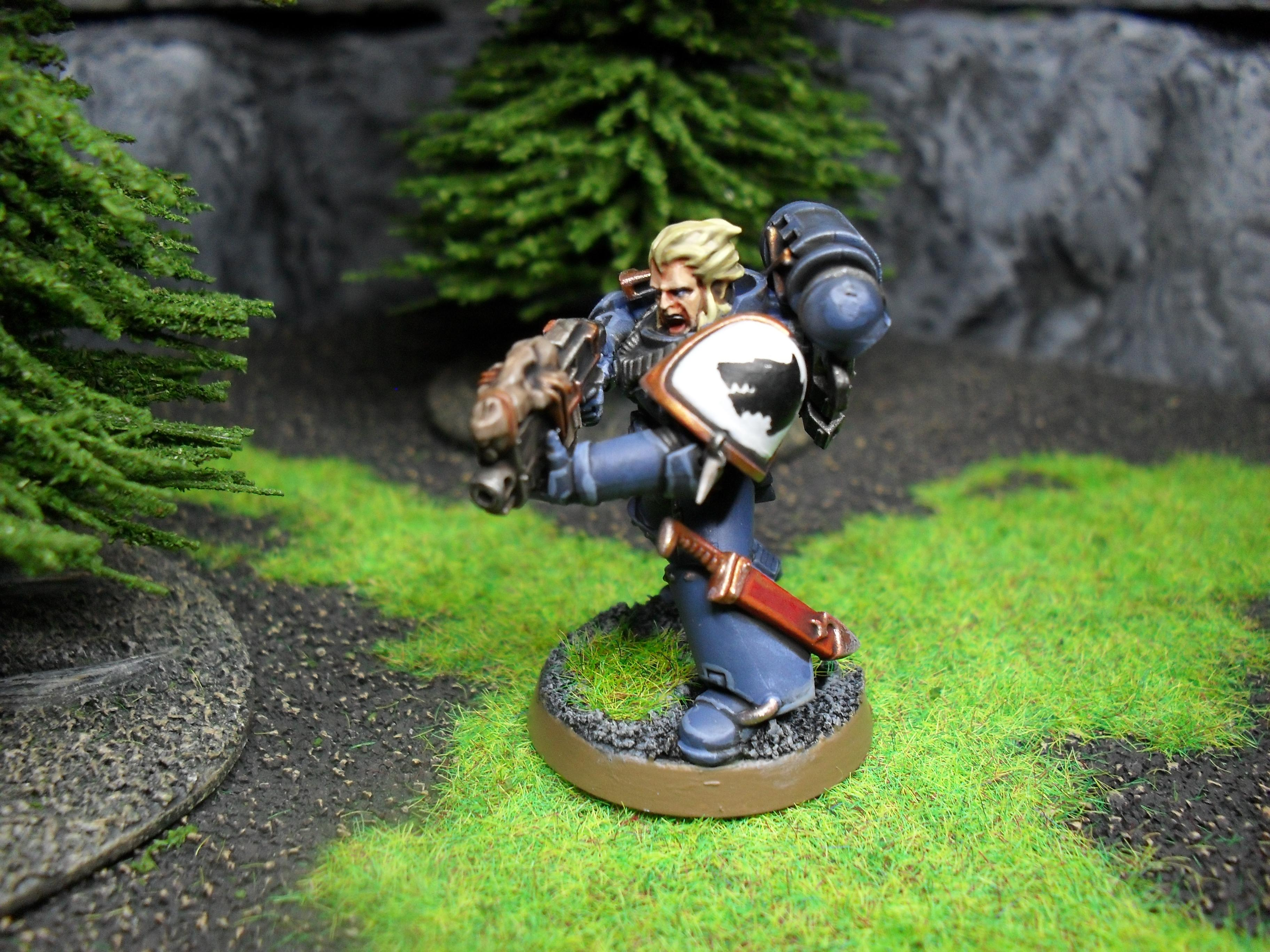 Grey Hunter, Space Marines, Space Wolves